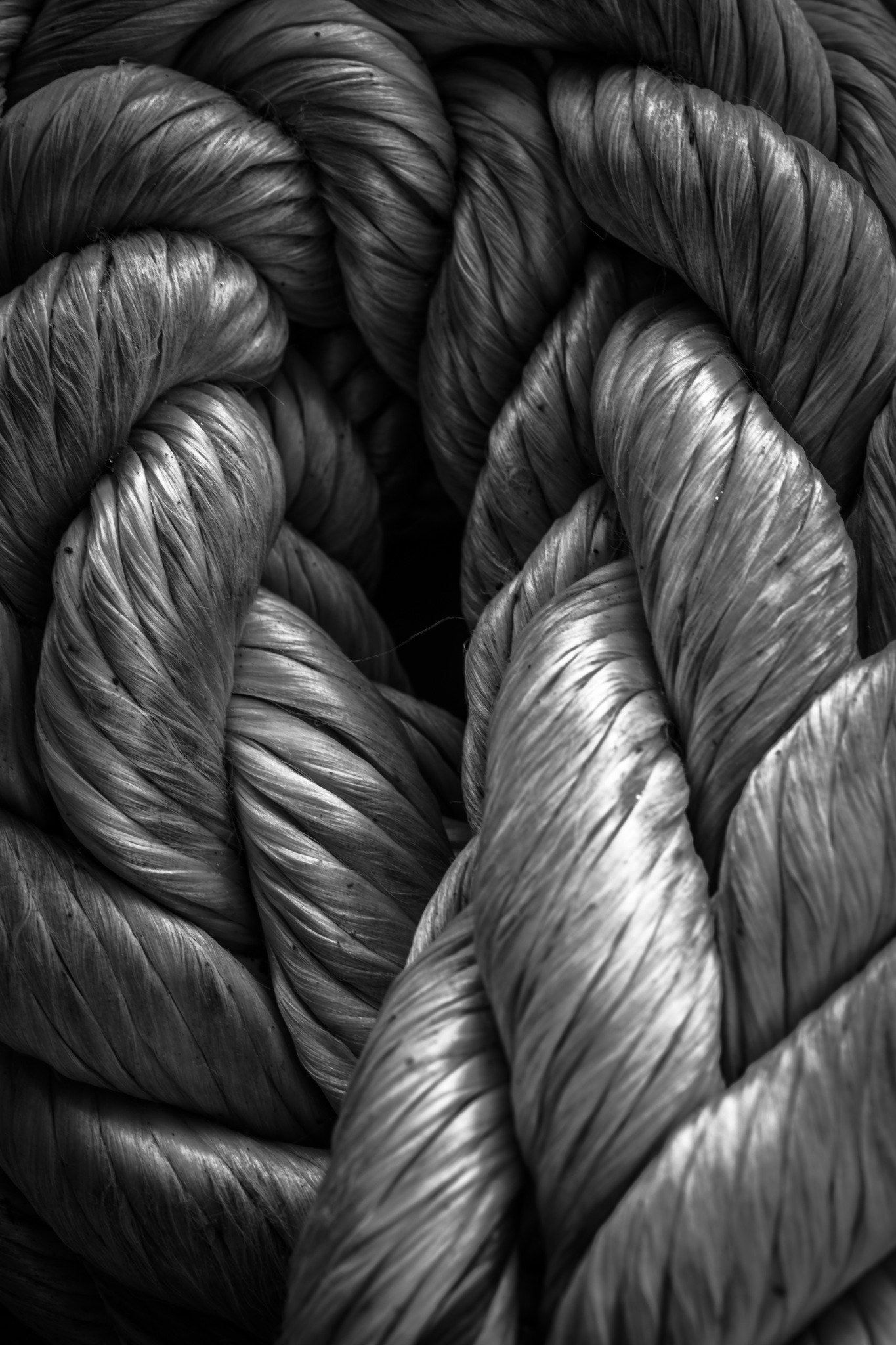 curves of rope by Connull Lang