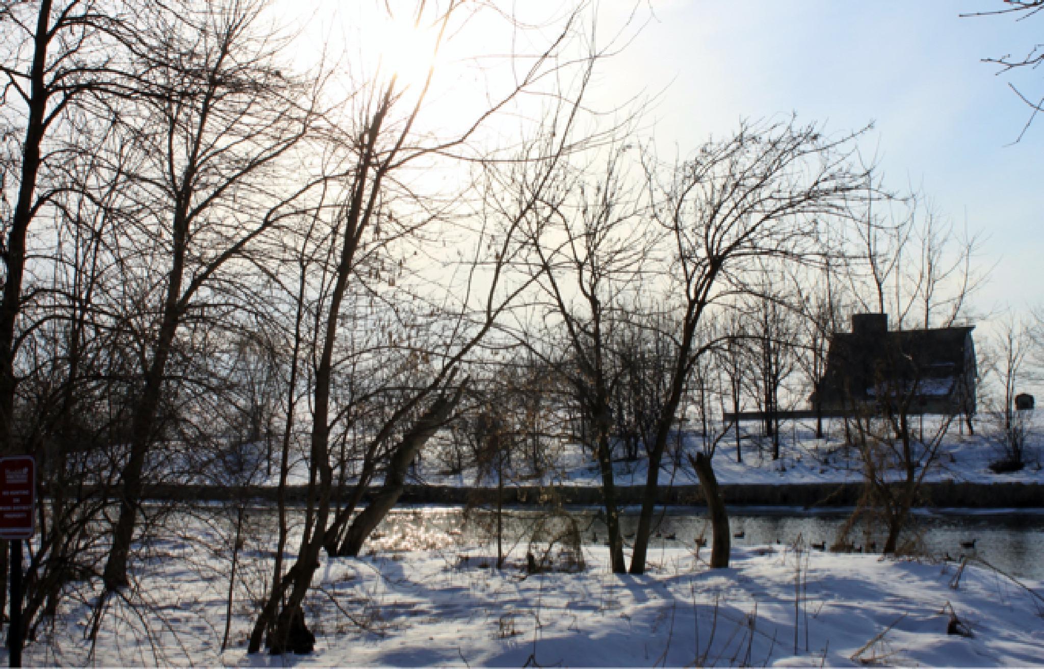 DuPage River 2015-02-22 001 by bforeback