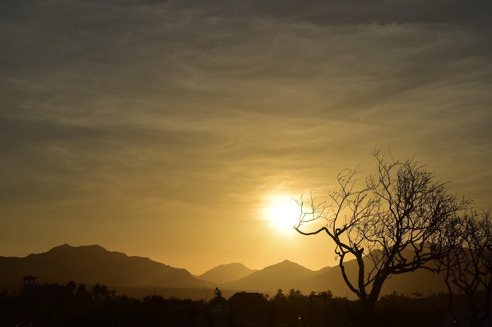 Yellow Sunset by Natashia Artz