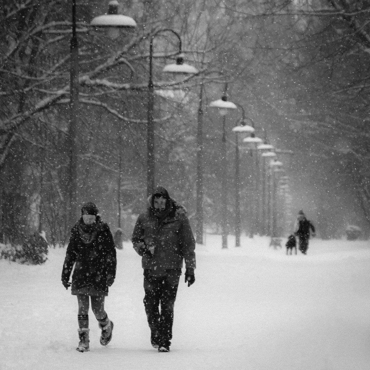Snow falling by Salam Yahya