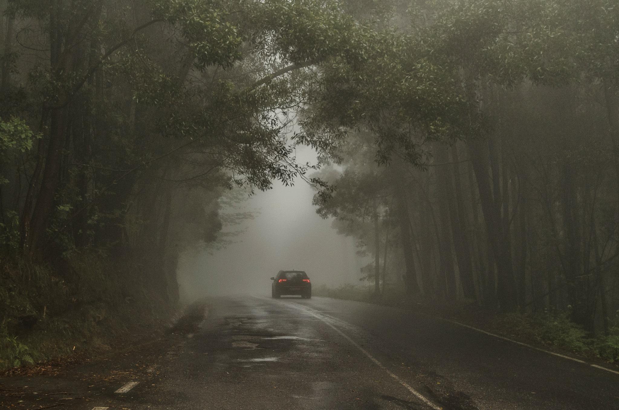 mystic road by Viren Khatri
