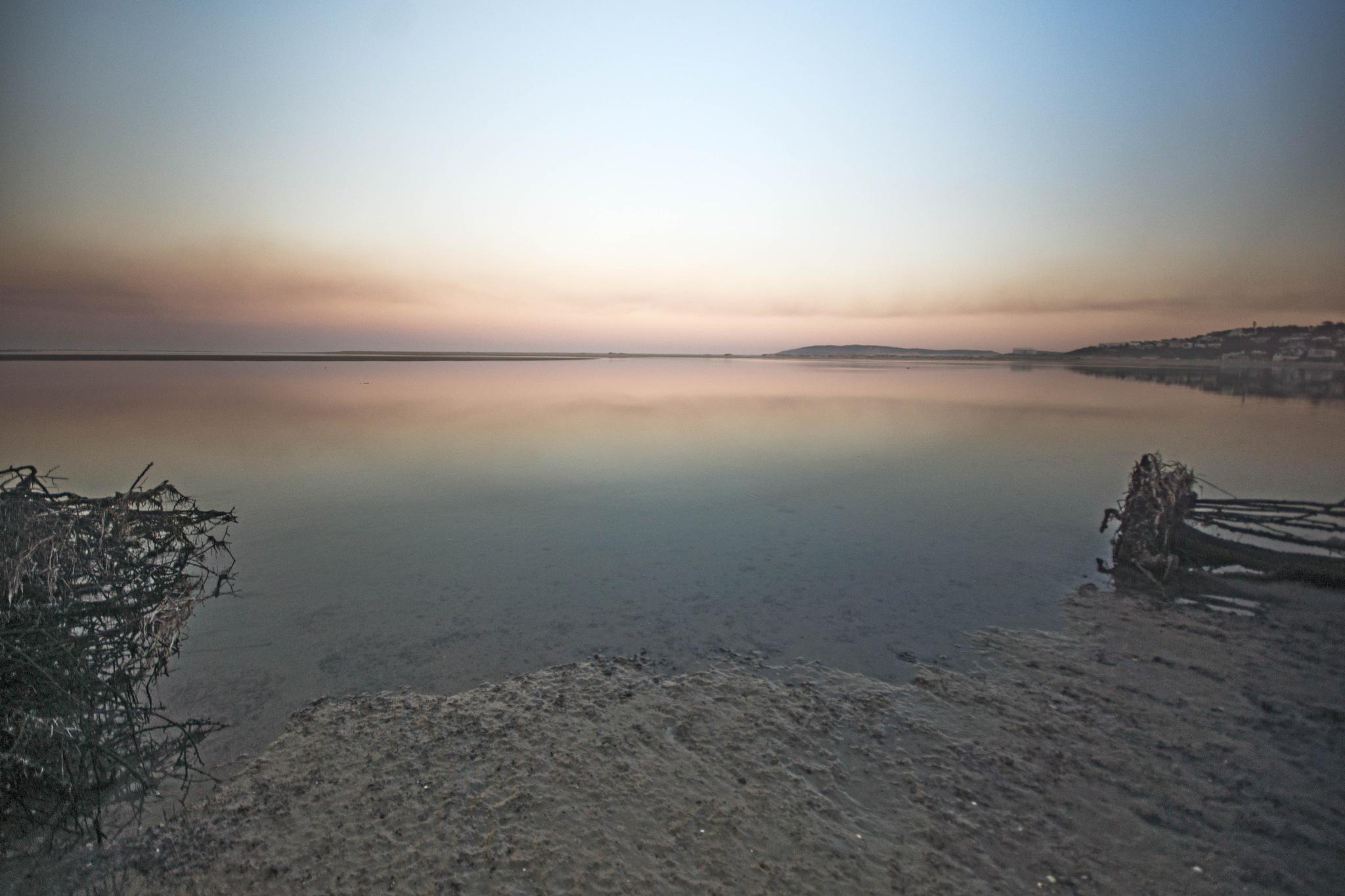 shoreline  by martin