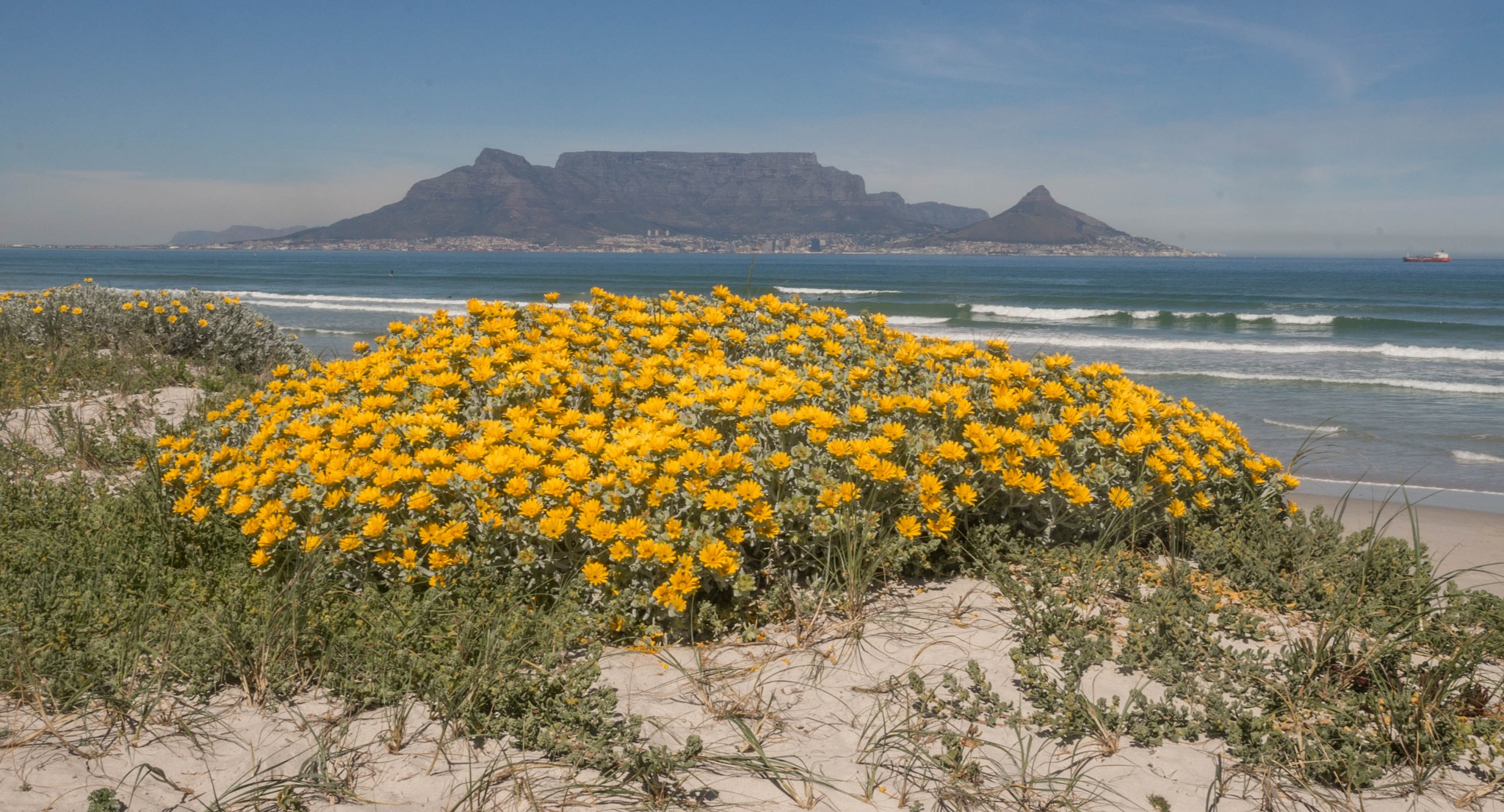 from blouberg  by martin
