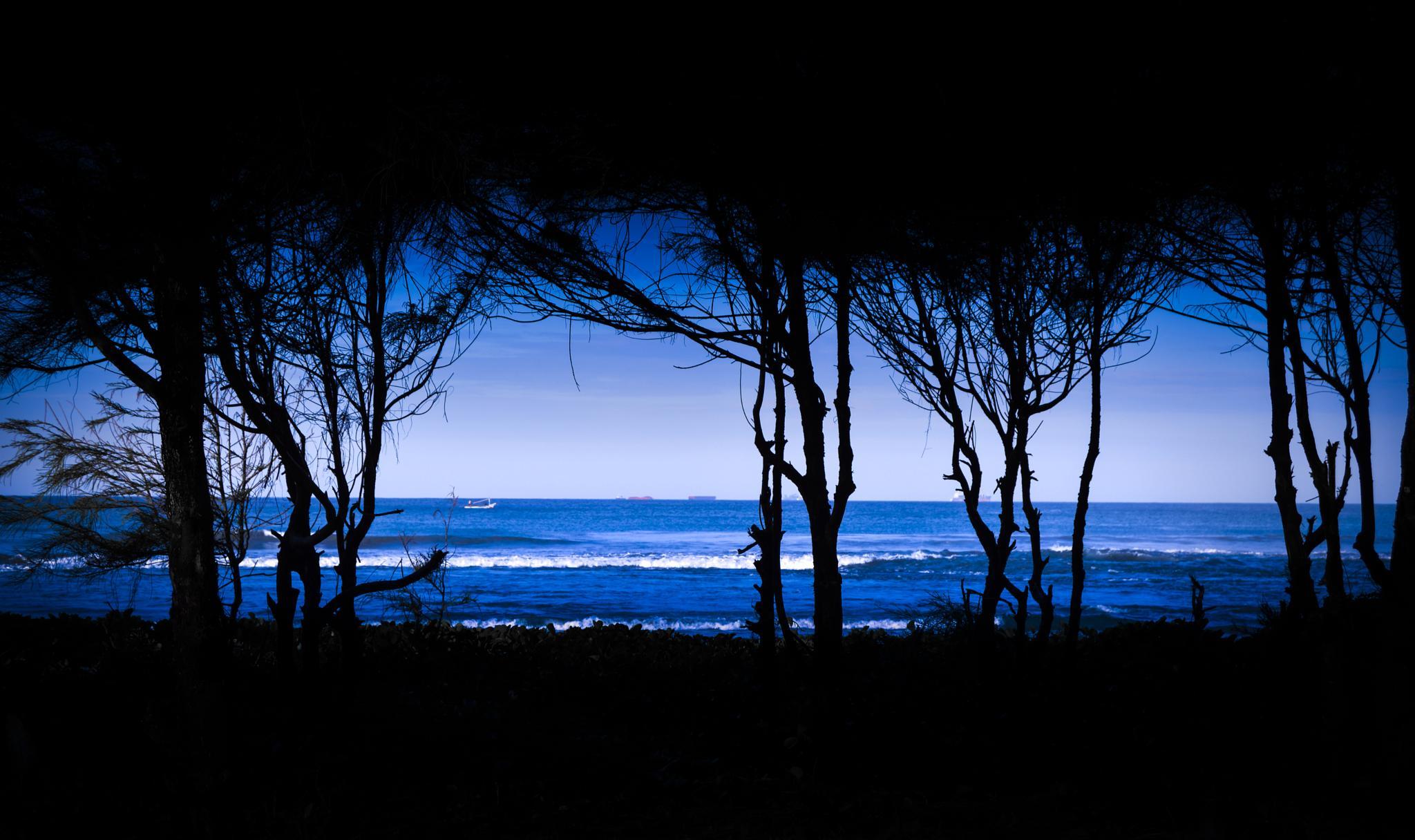 Beach in Frame by bayunugroho78