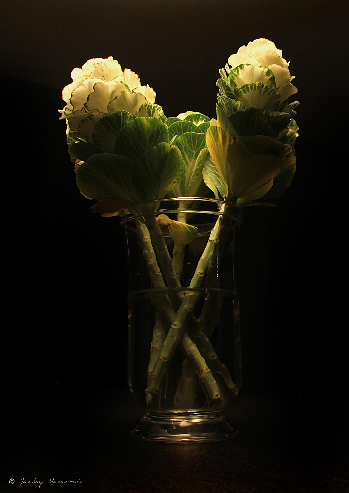 Flowers01 by Jacky Honoré