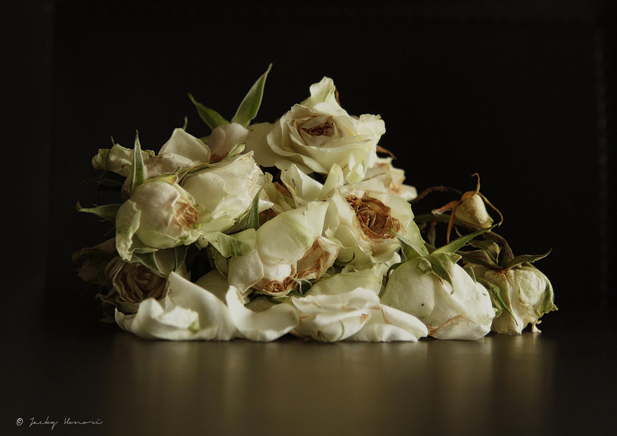 Flowers02 by Jacky Honoré