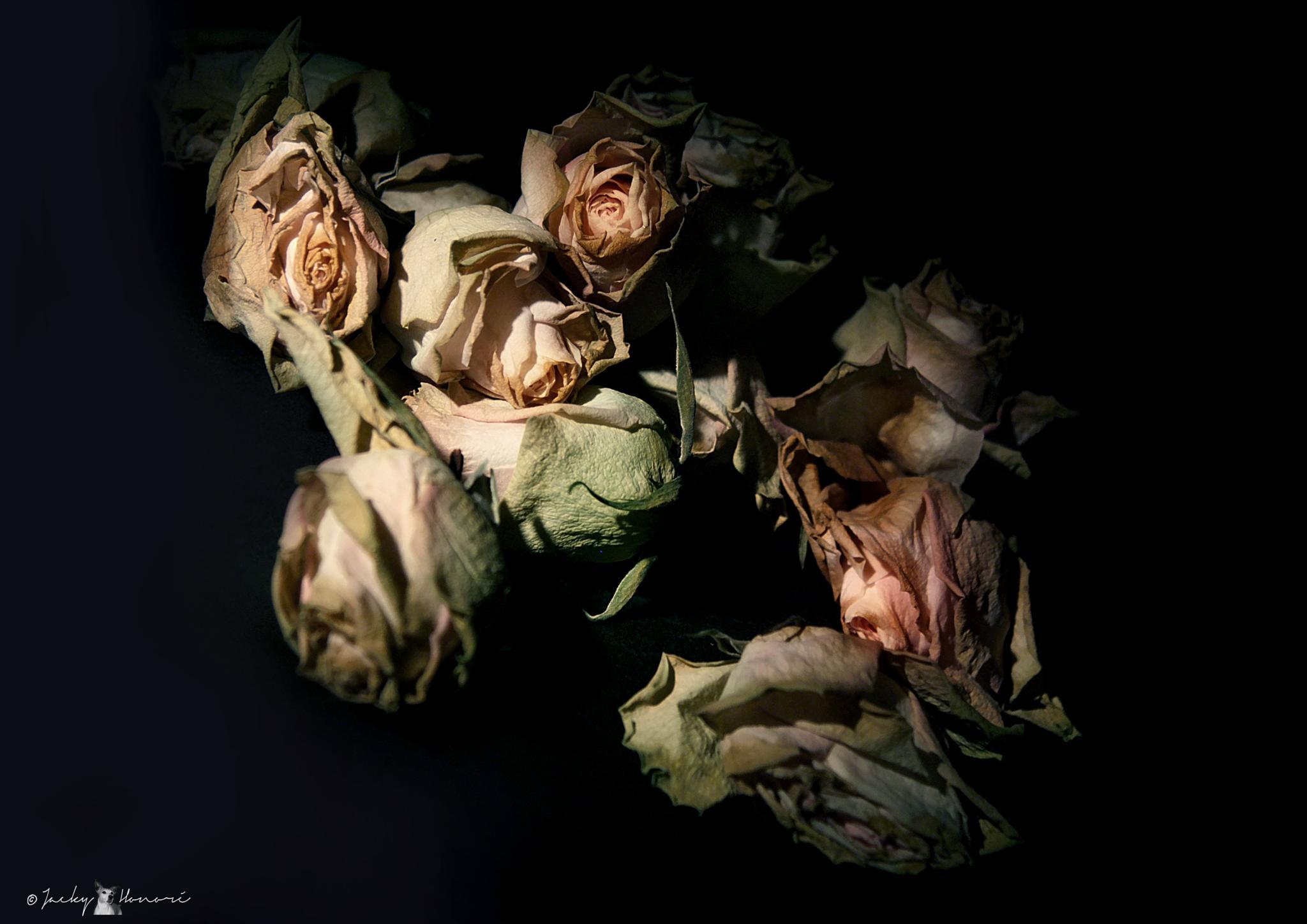 Flowers04 by Jacky Honoré