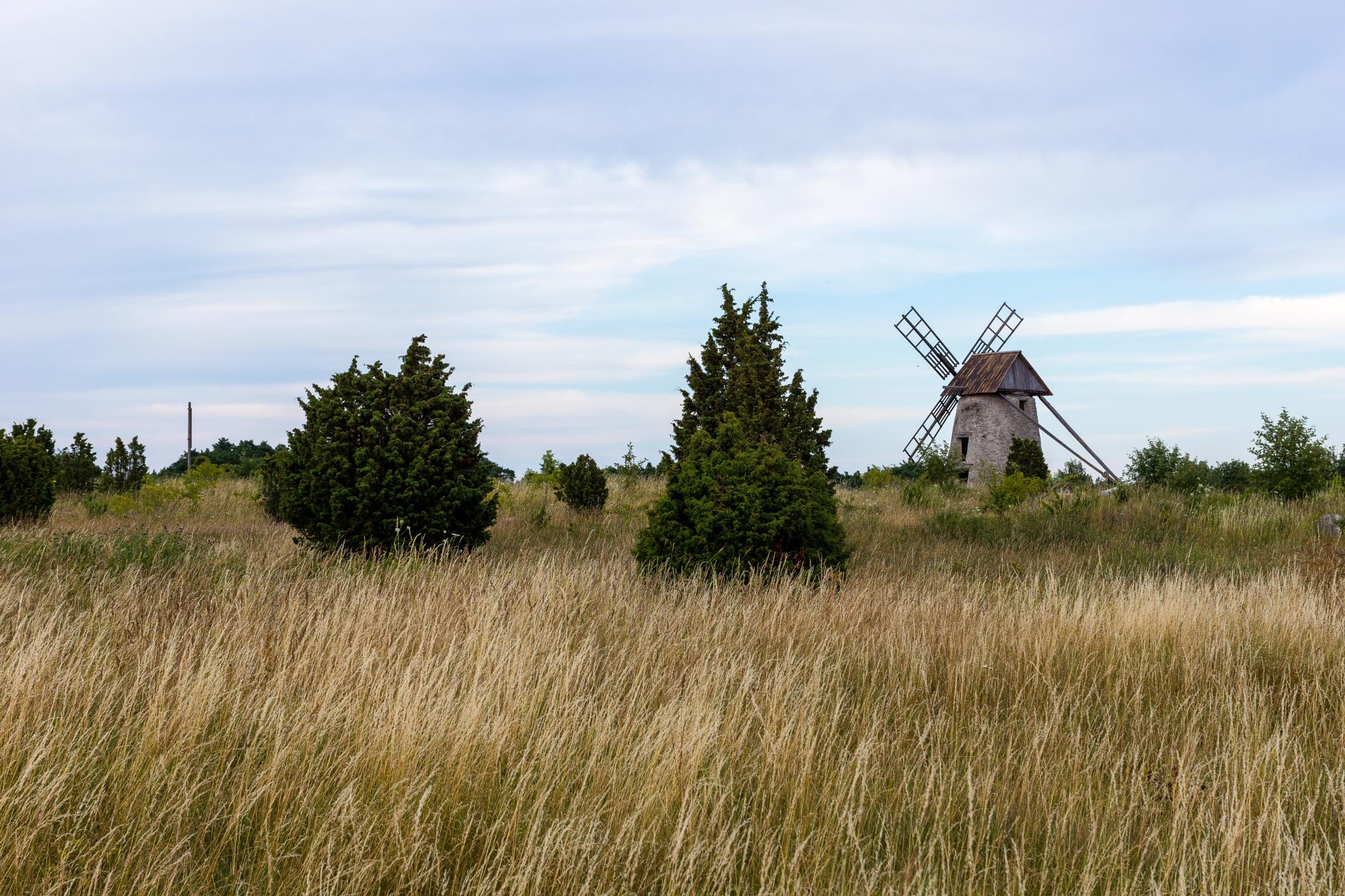 Windmill at Fårö by André Vidén