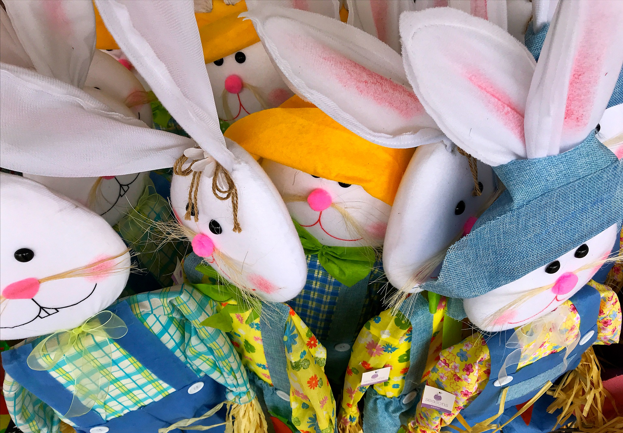 Easter Silliness by Charlie Murphy