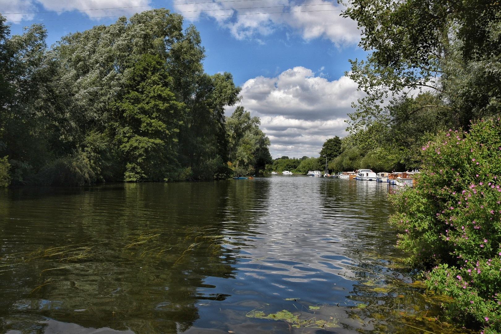 Wroxham by David Starkey