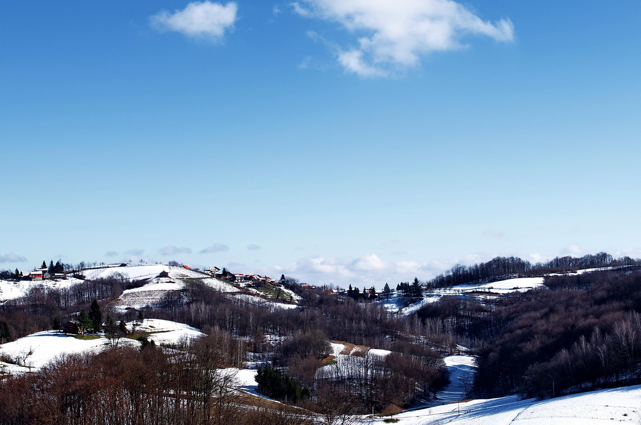 zima  by Zdravko Sudac