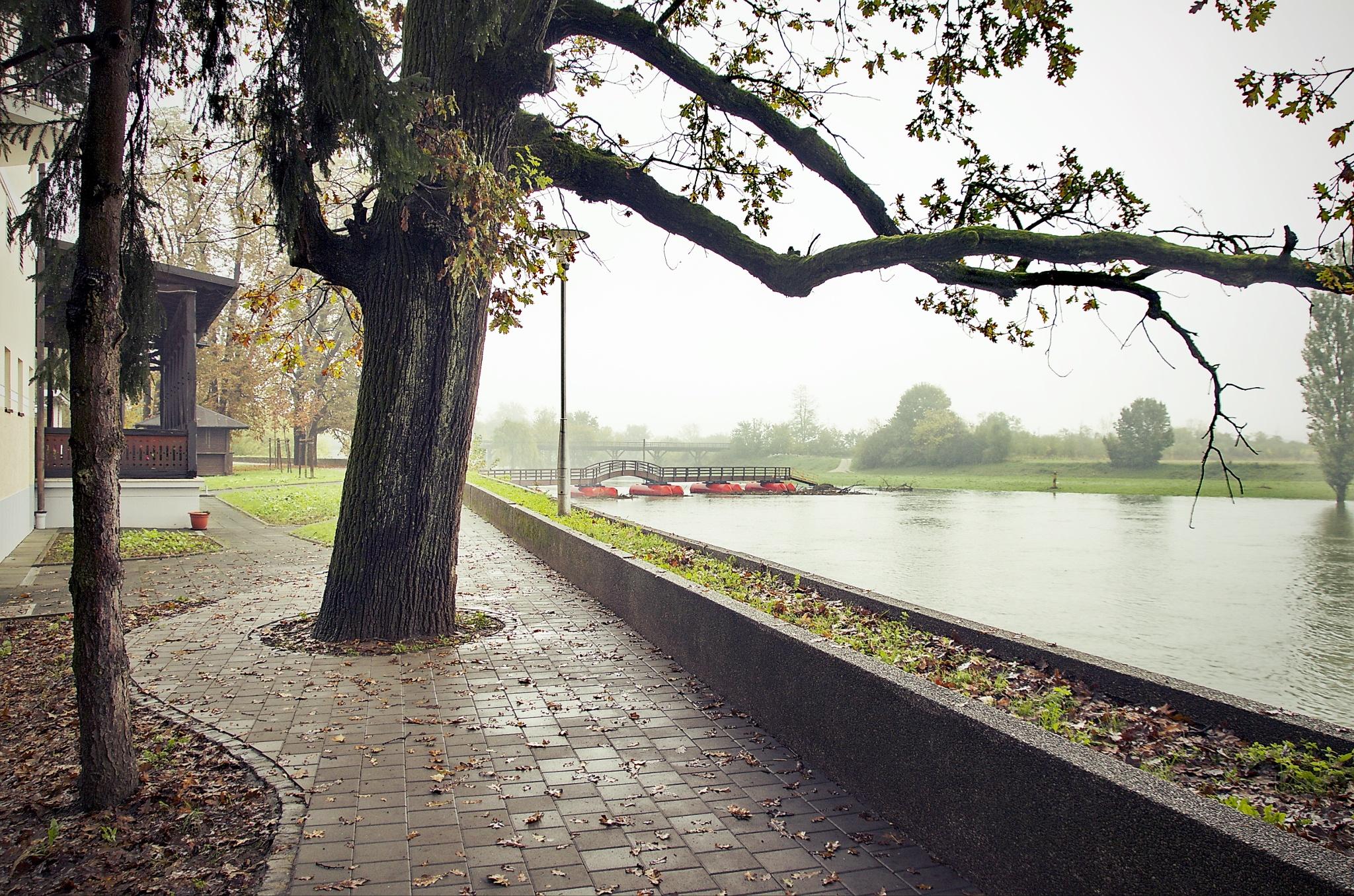 šetnja uz rijeku by Zdravko Sudac