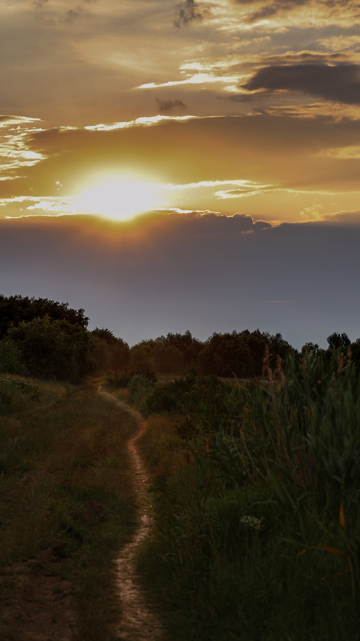 At sunset On the roads of Bucharest by Costy Pirvu