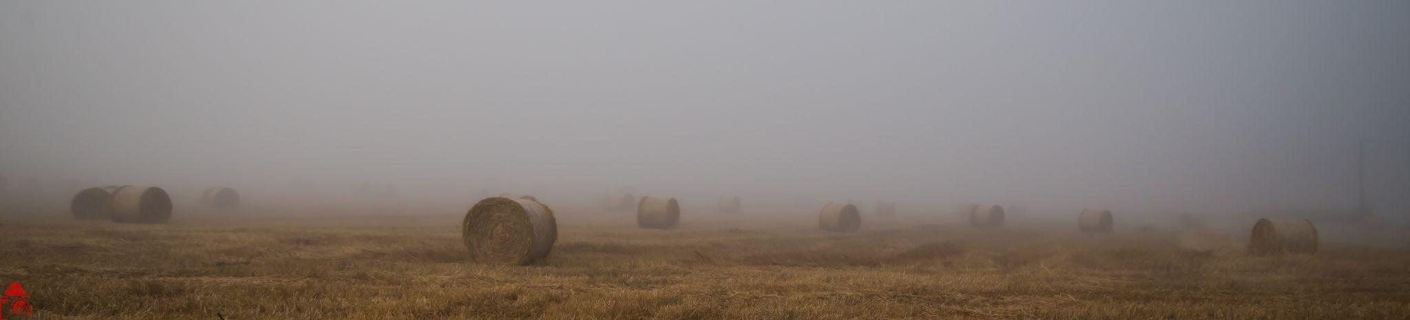Le brouillard by Le Baroudeur