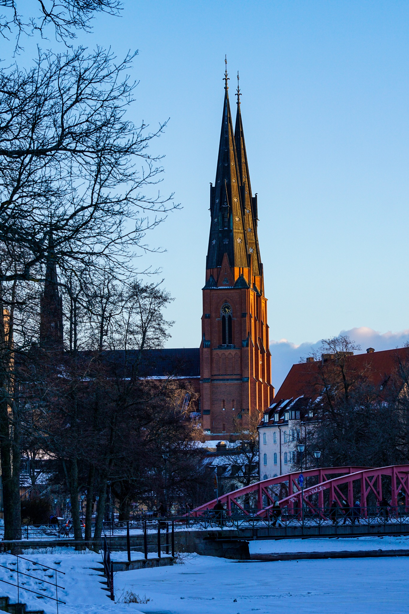 Uppsala Cathedral  by Scott Davies