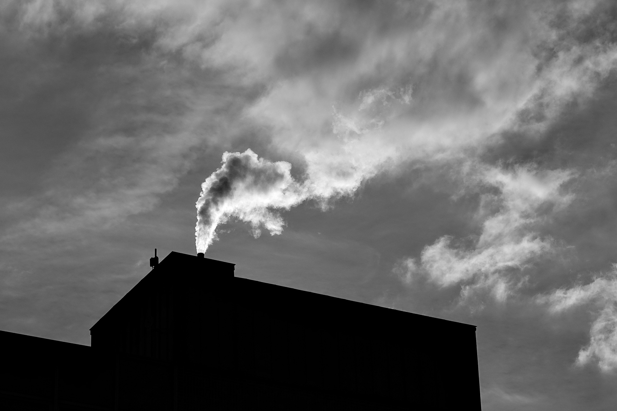 smoke into clouds by Tom Eppelin