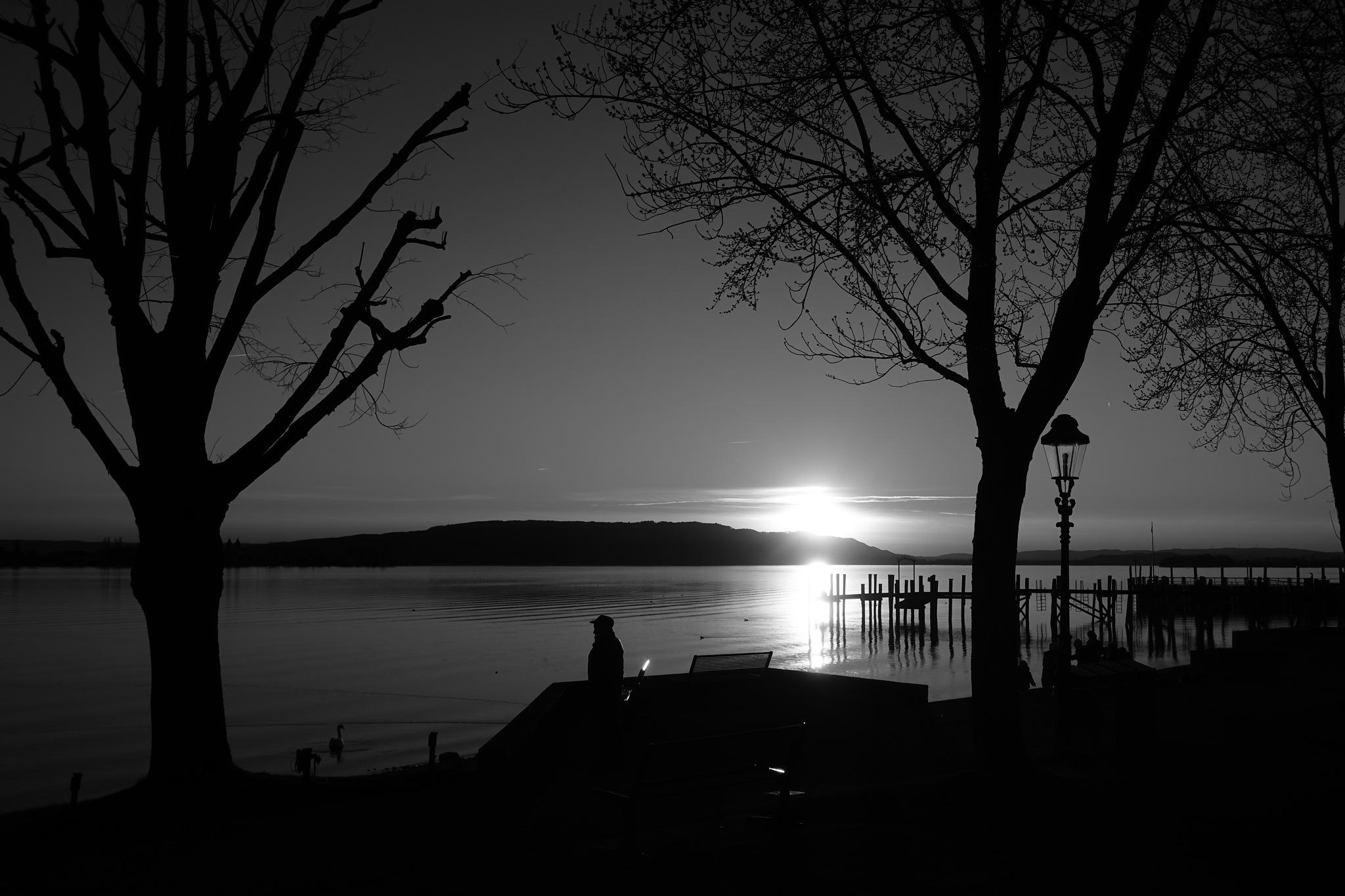 sunset (bw) by Tom Eppelin