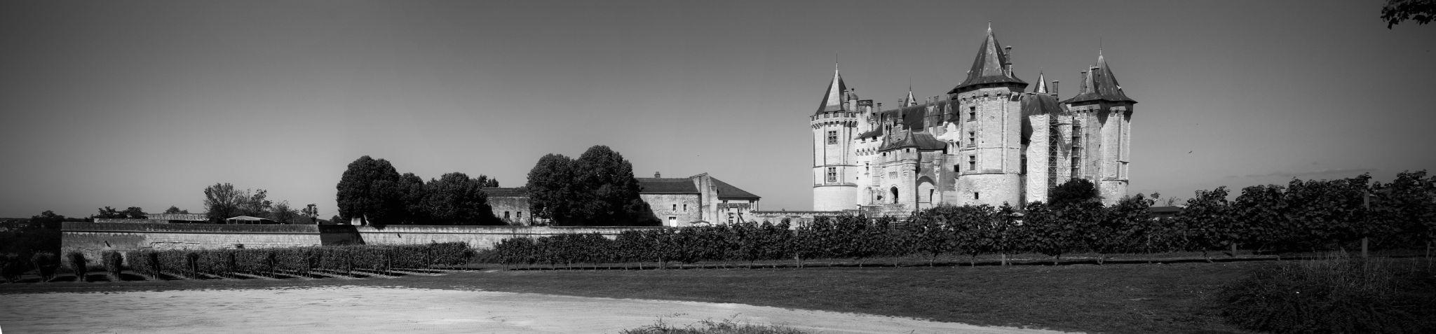 Castle of Saumur by emmanuel liegeois