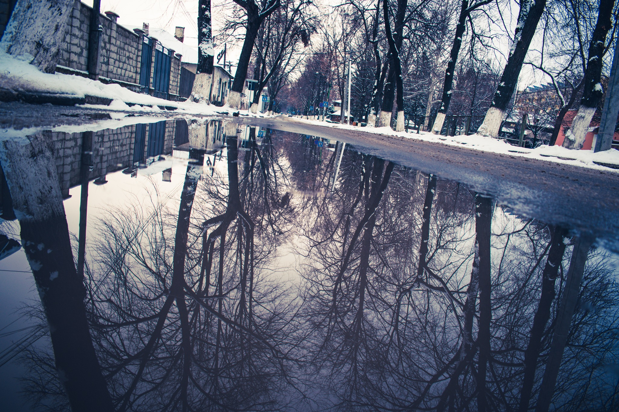 reflection by Ciprian Bernic