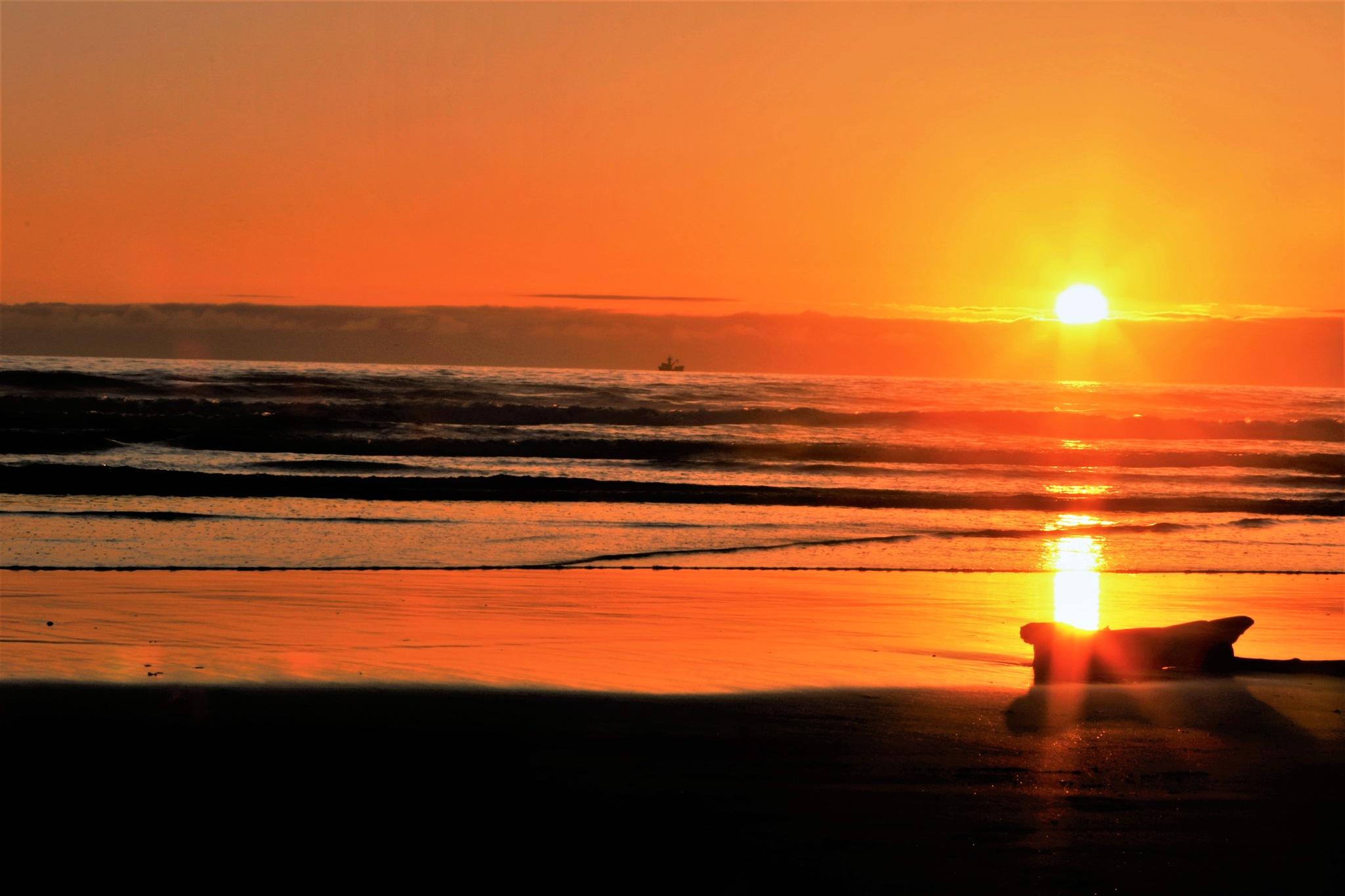 Nye Beach Golden Hour Sunset by Casey Bartel