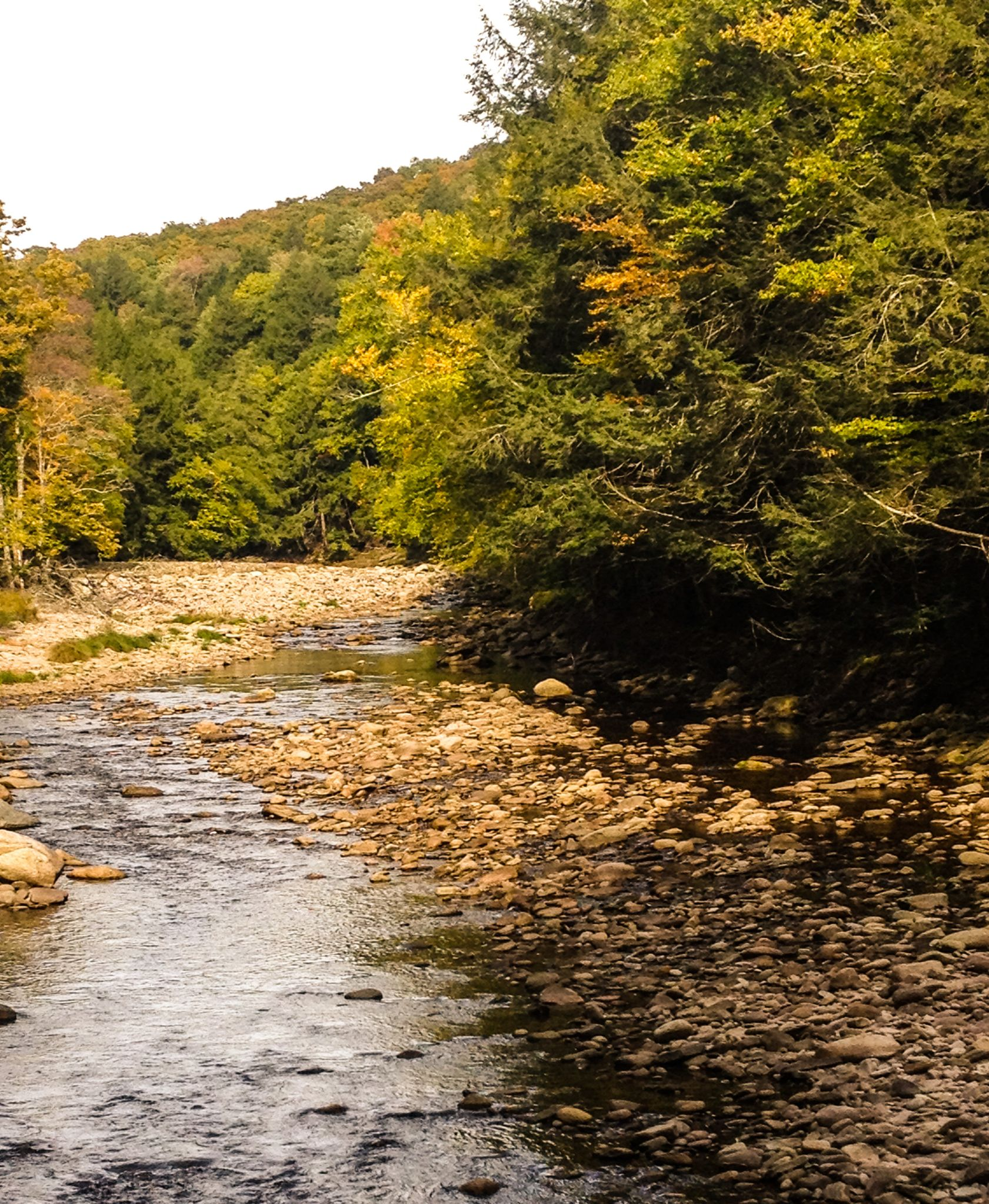 Peaceful Autumn Stream by Ruth Silvers