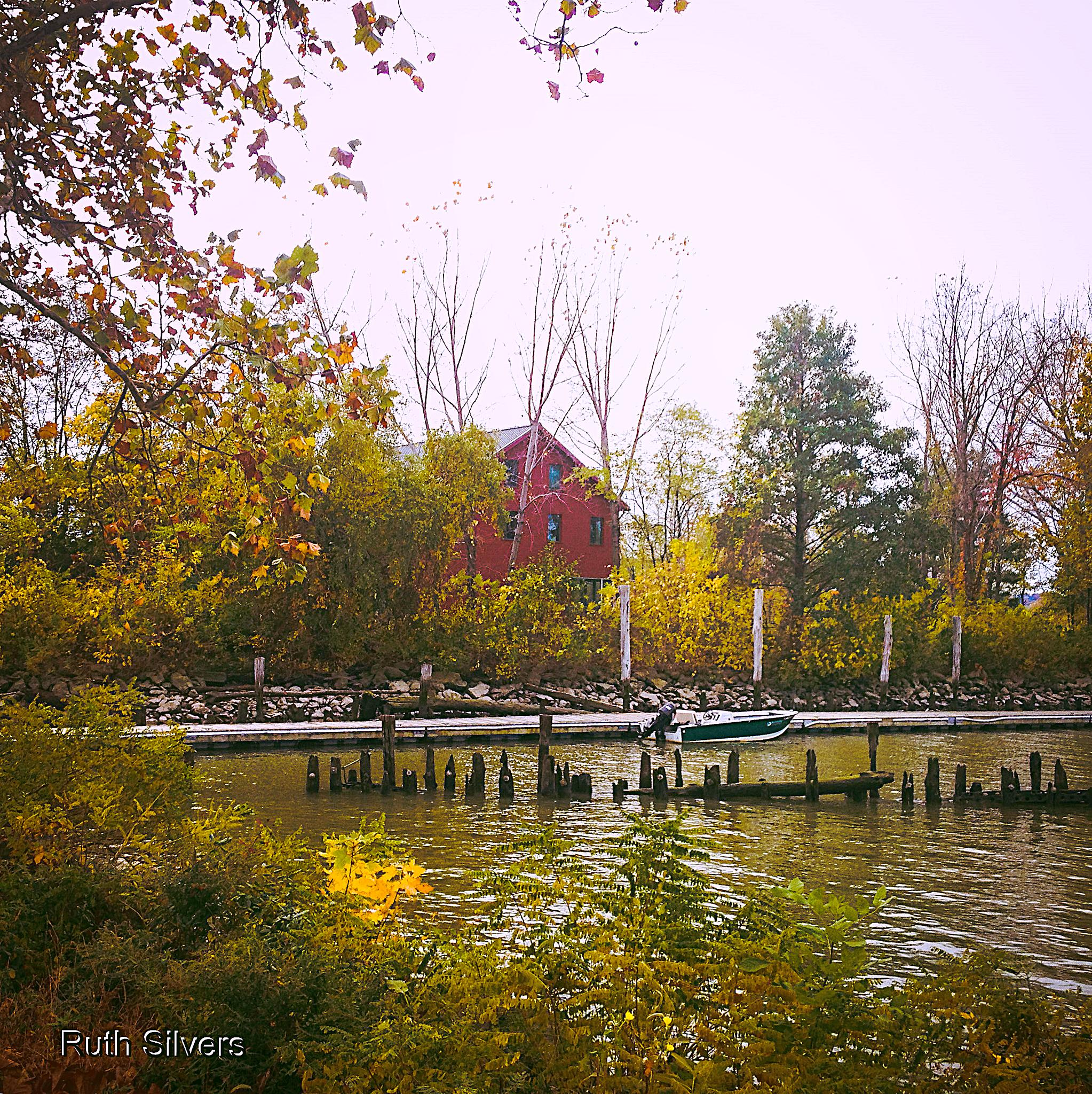 Fall scene by the river by Ruth Silvers