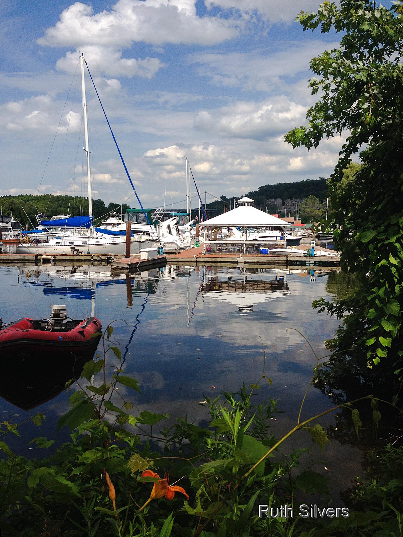 Summer at the marina by Ruth Silvers