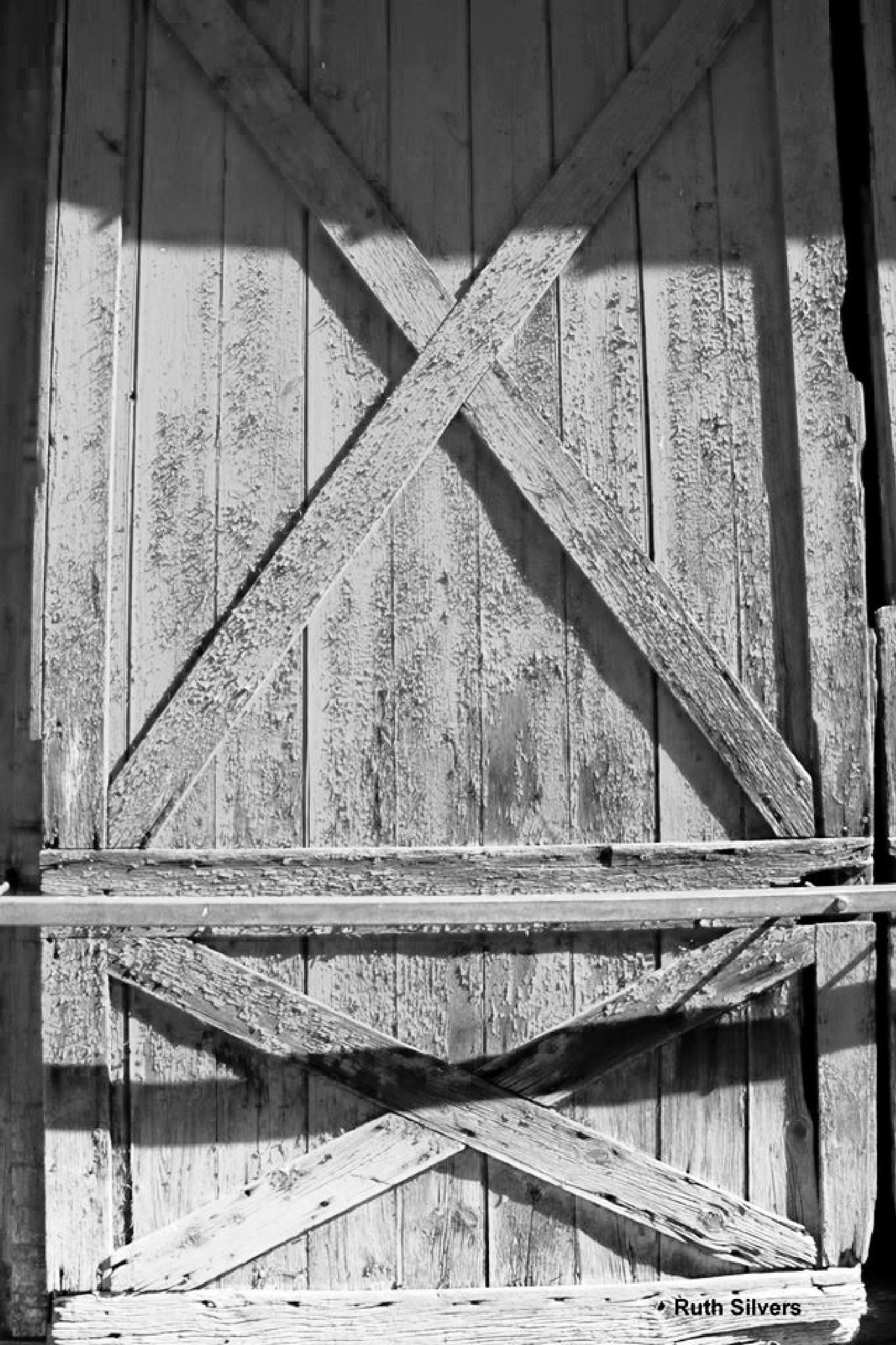 Barn door  by Ruth Silvers