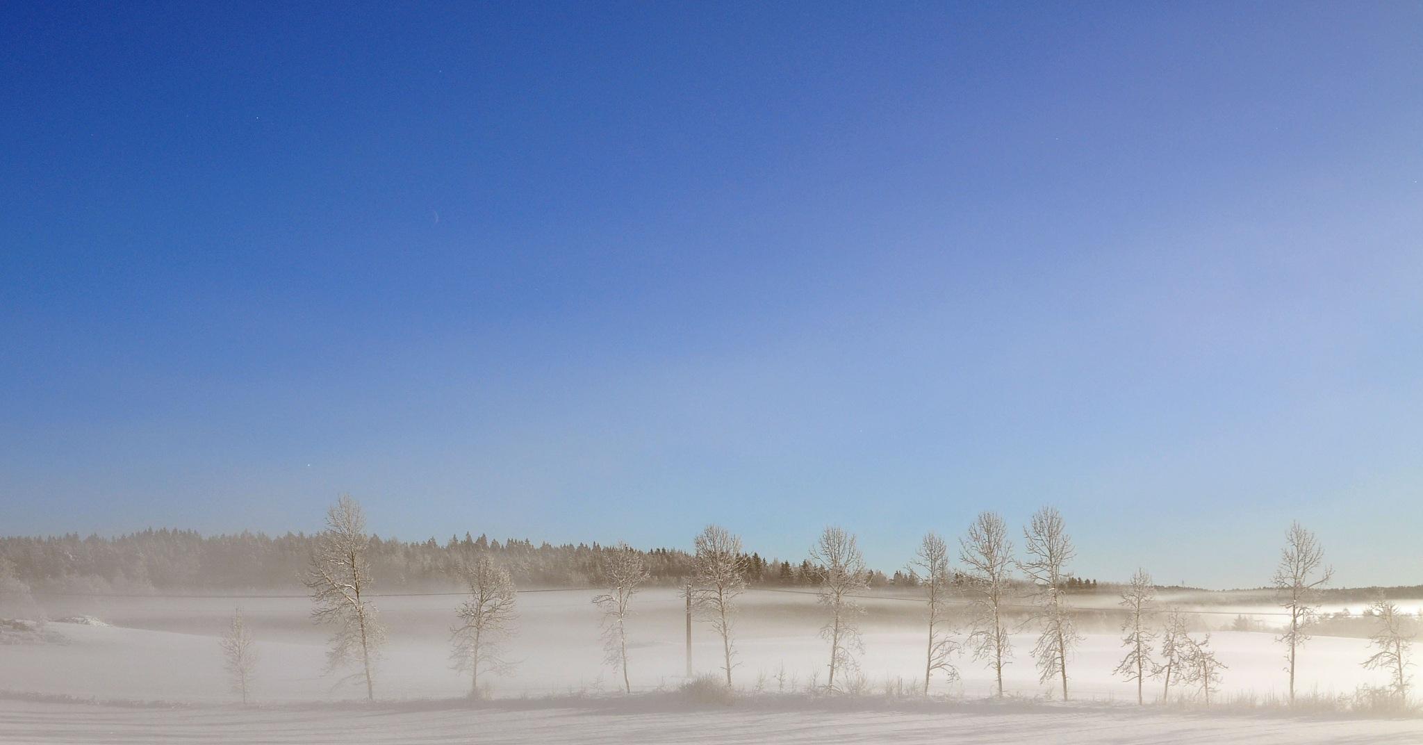 Untitled by Morten Andersen
