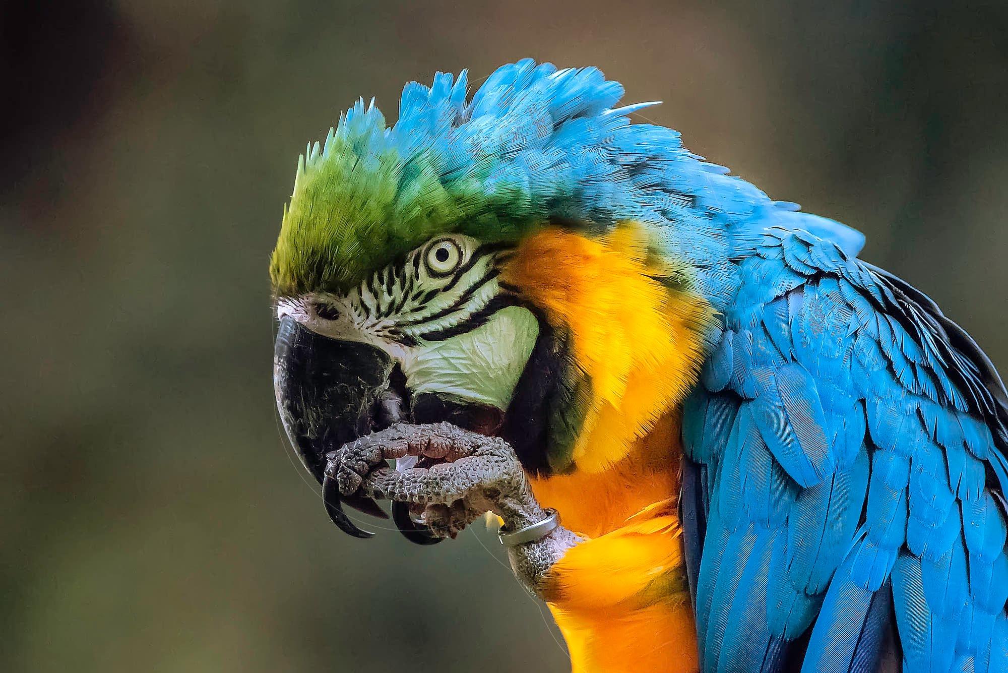 Vivid colors by sergiofernandes6767