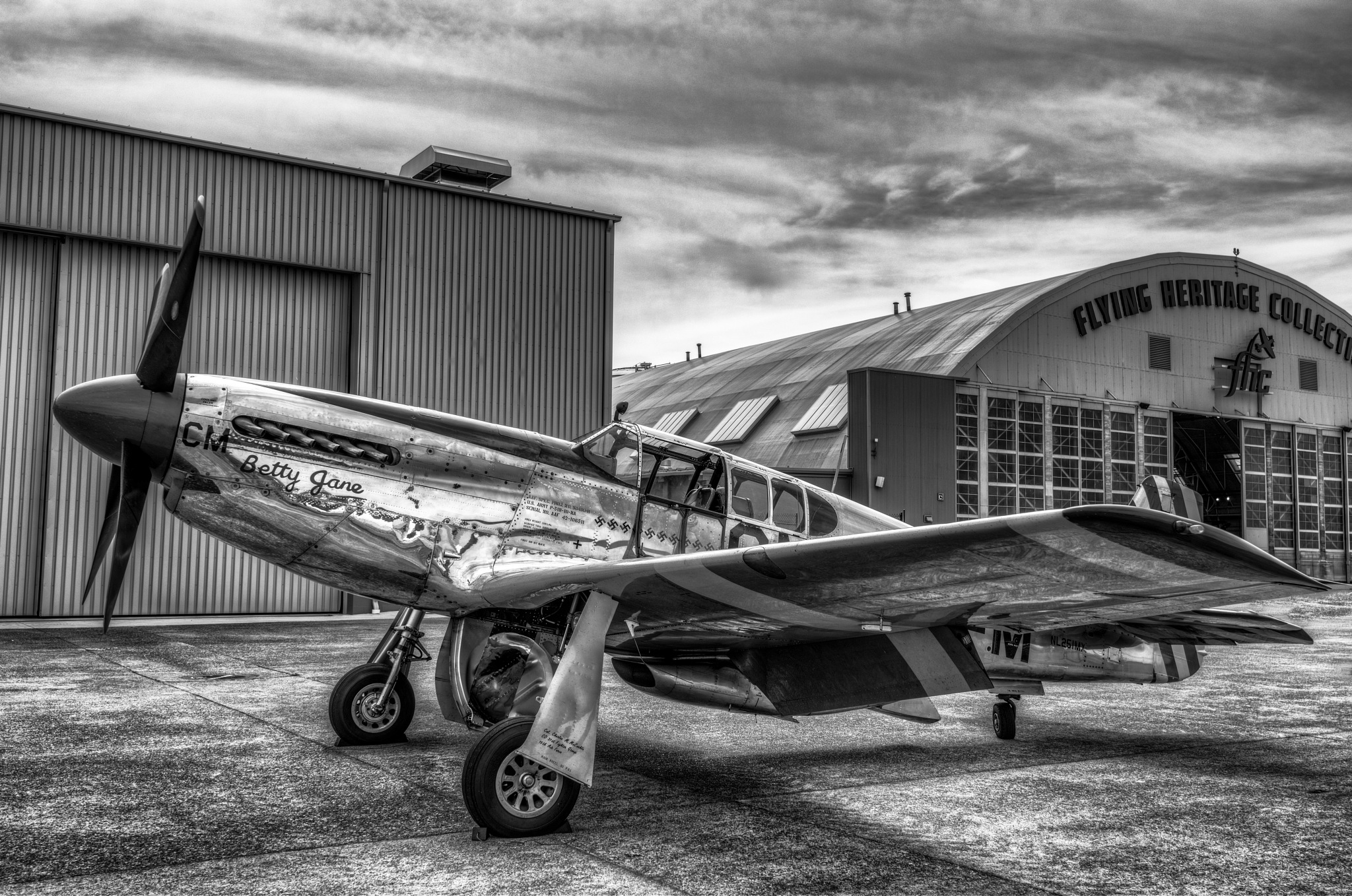 P-51 Mustang by Lightboxphoto