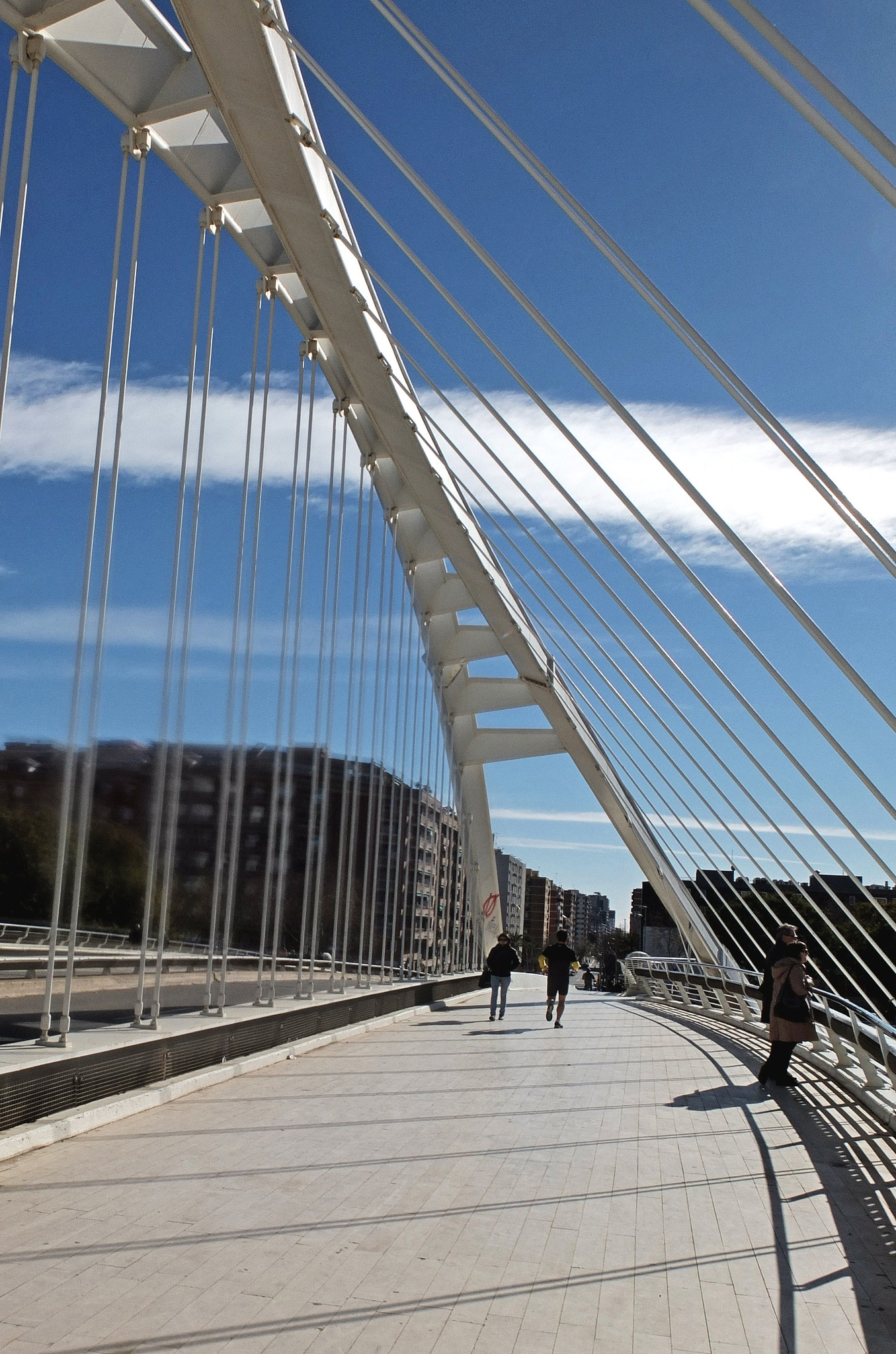 Calatrava bridge by Alberto Figueroa