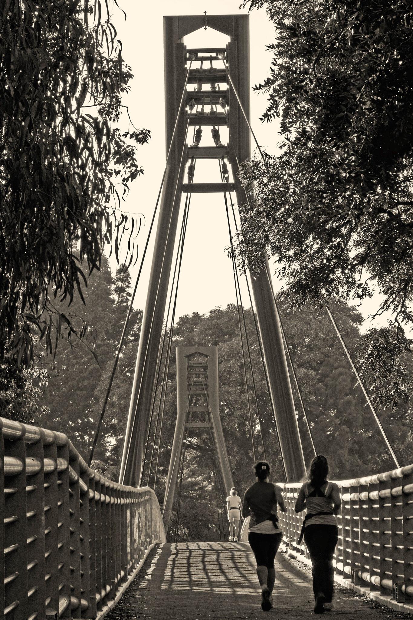 Runners on the bridge by Alberto Figueroa