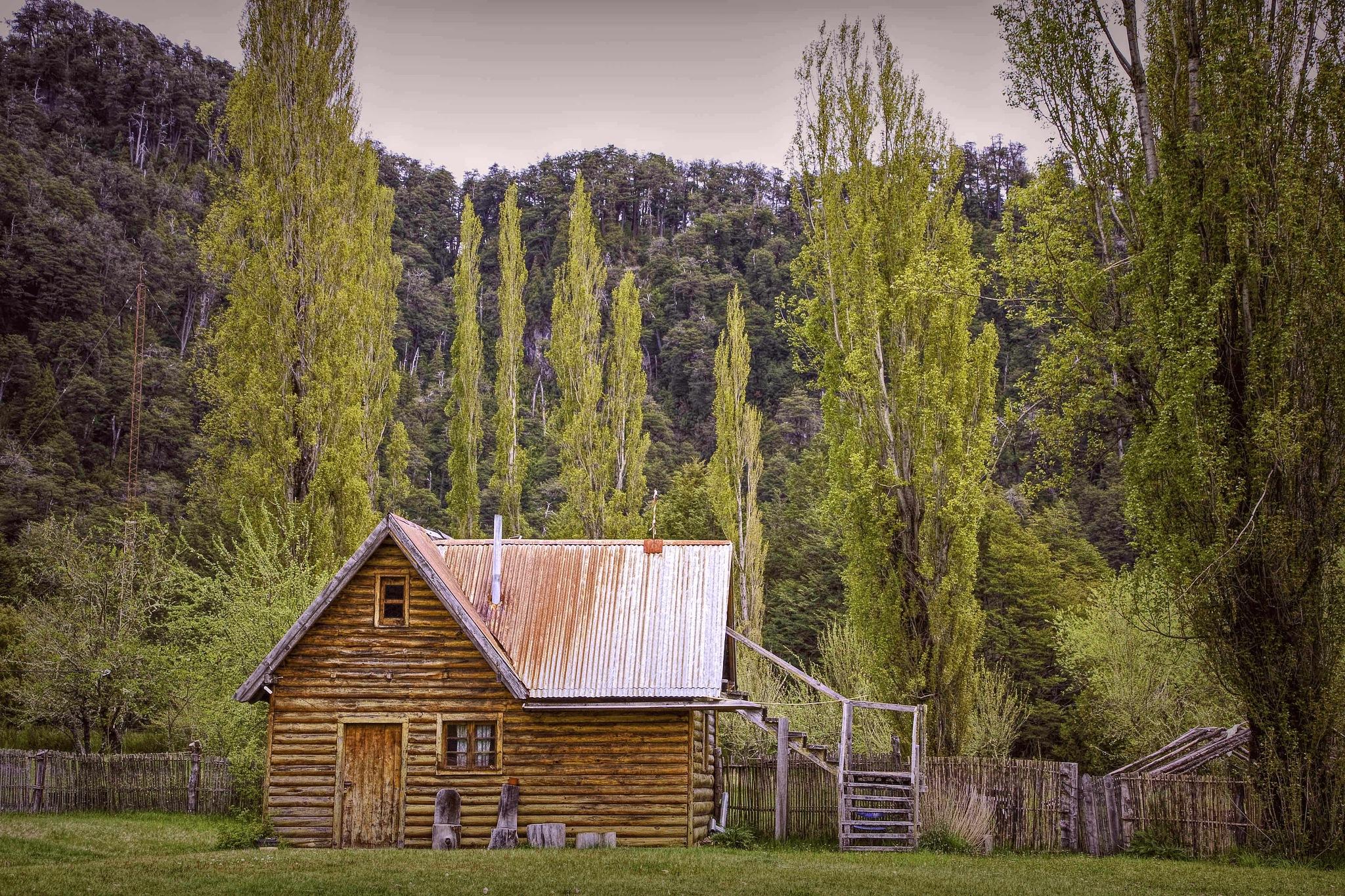 The woodman's house by Alberto Figueroa