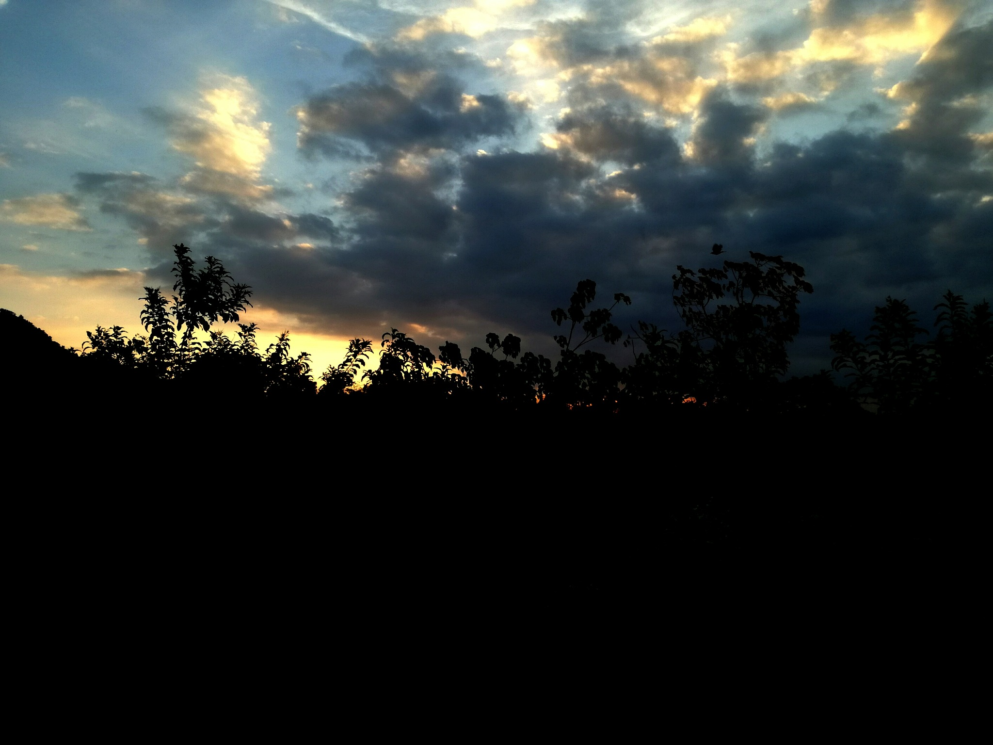 Beautiful Clouds by Adriana Salas