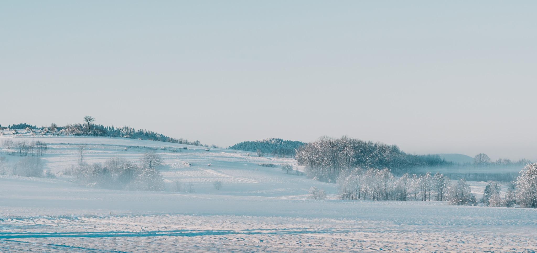 Winter by Szymon Maciejczyk