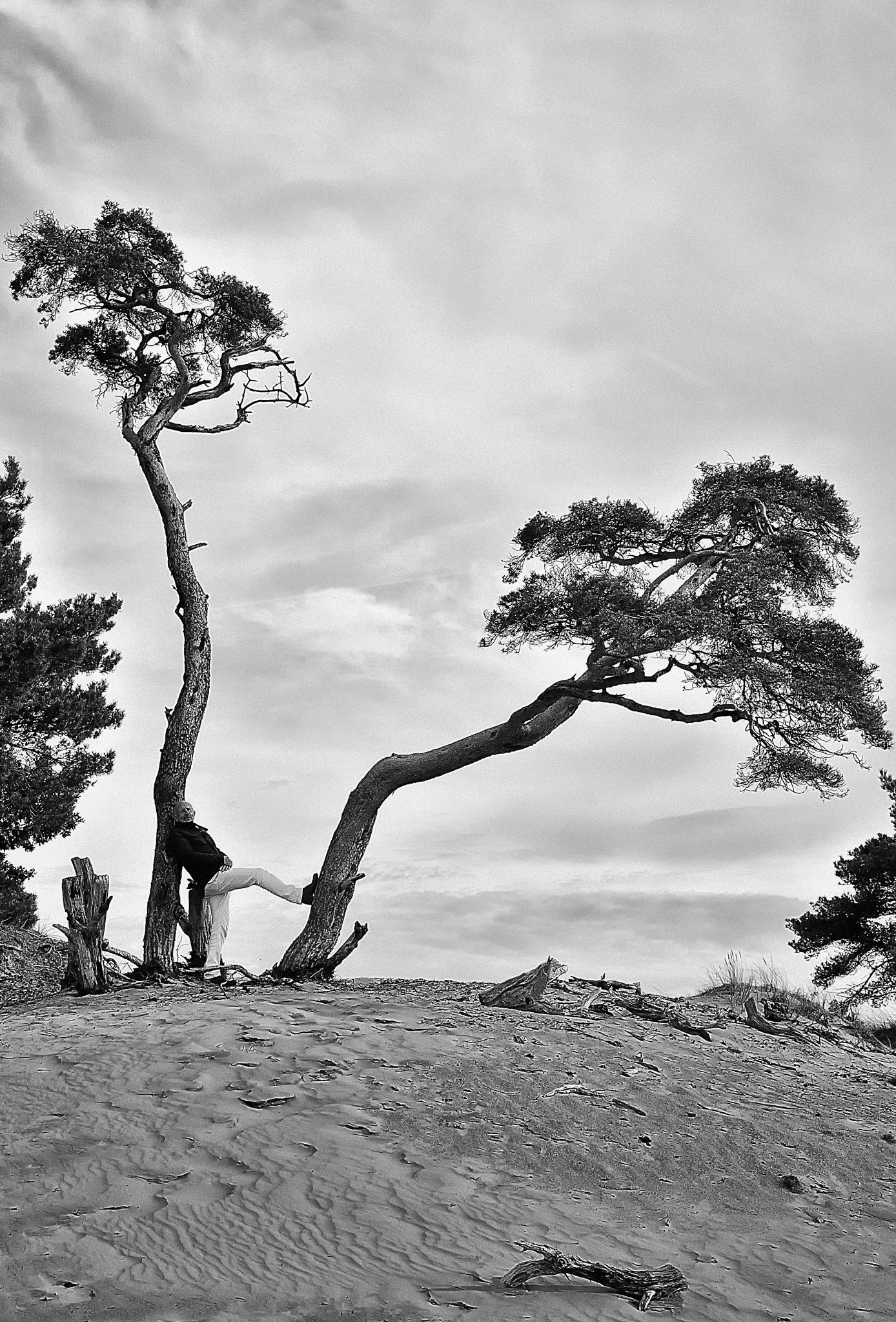 Leg by Neill PhotoArt