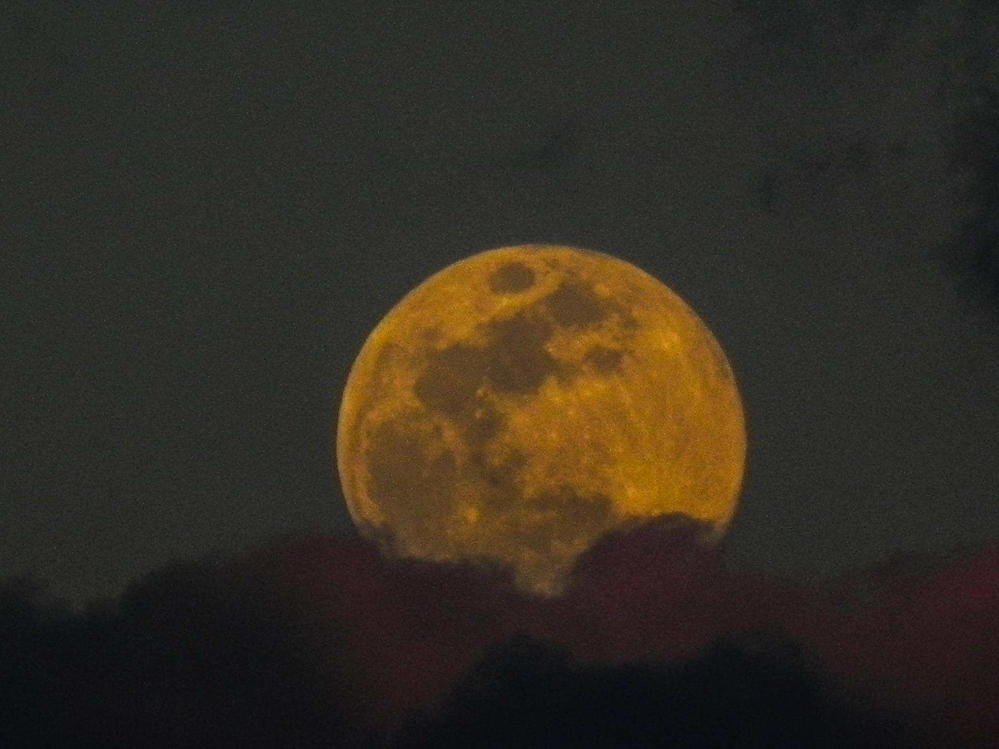 full moon by amanda b.