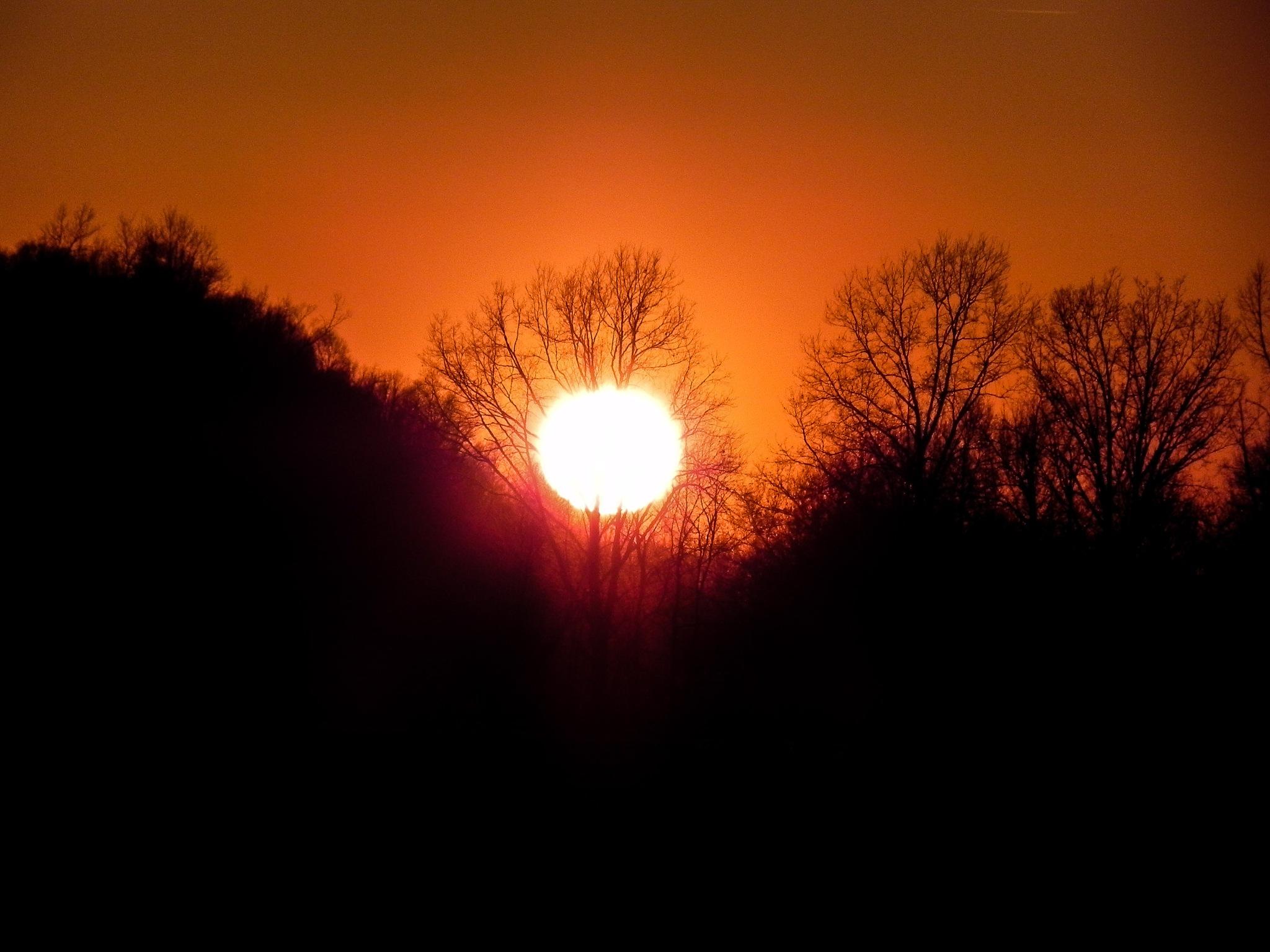 sunset by amanda b.