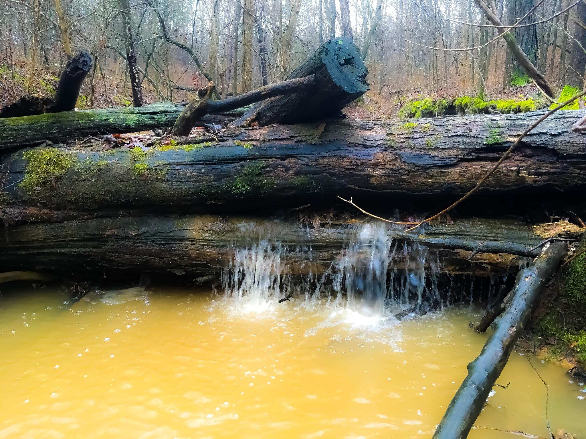 Creek  by amanda b.