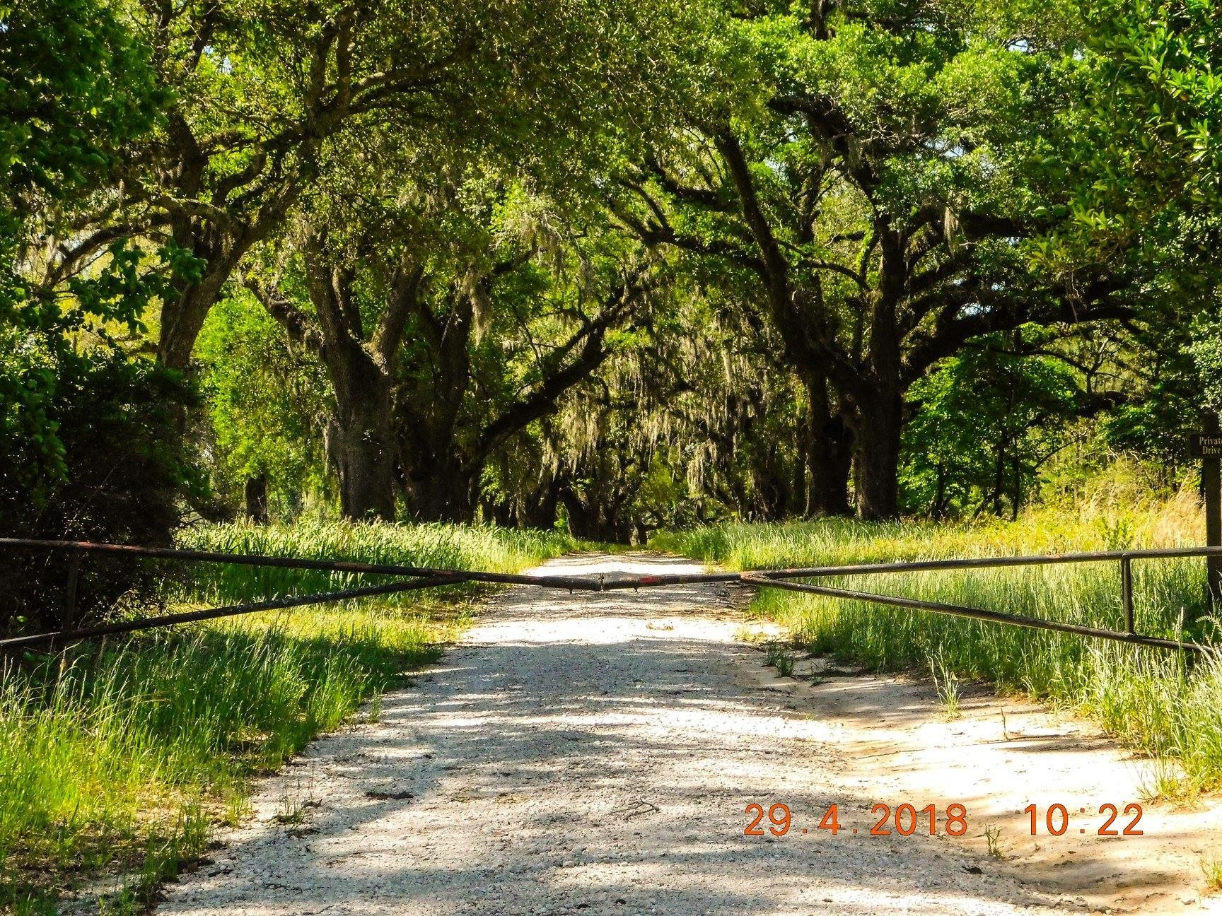 Driveway  by amanda b.