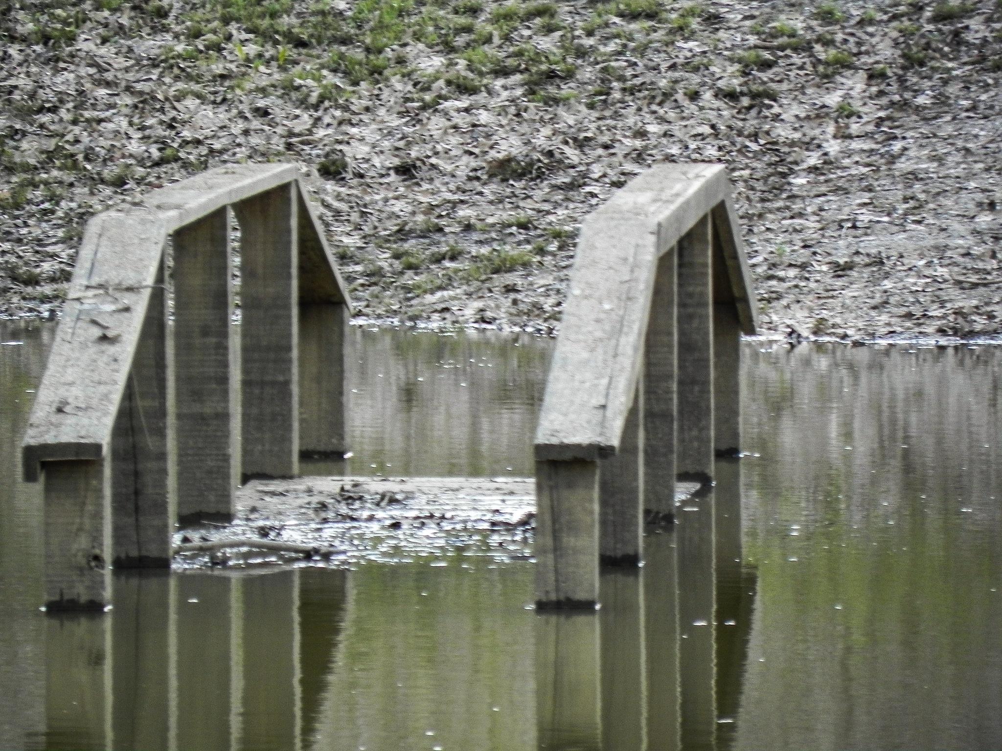 bridge by amanda b.