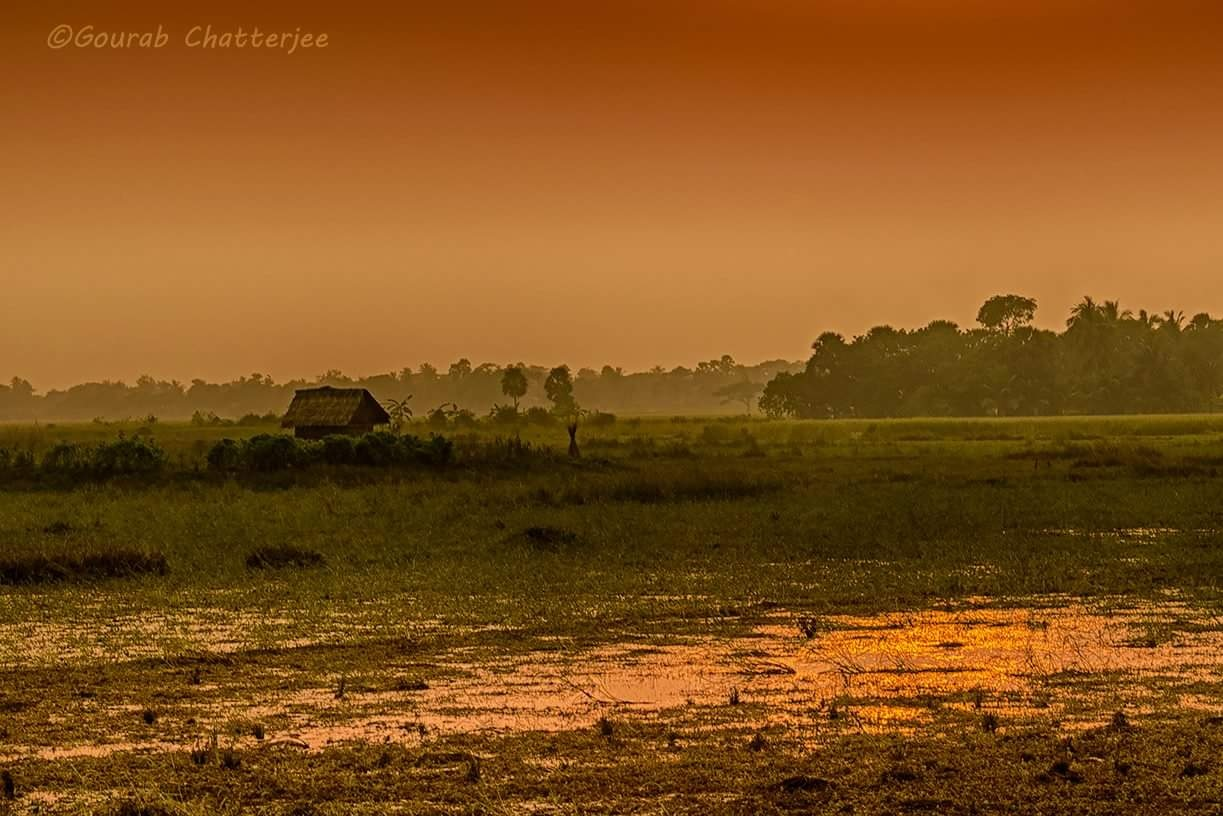 The lonely house... by Gourab Chatterjee