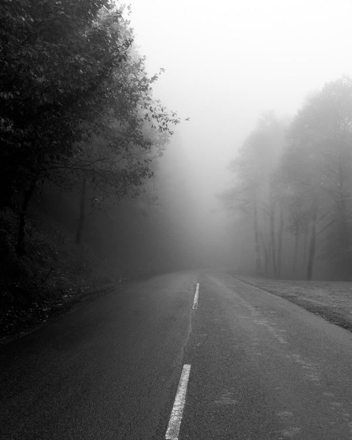 foggy road by Majid Taherian
