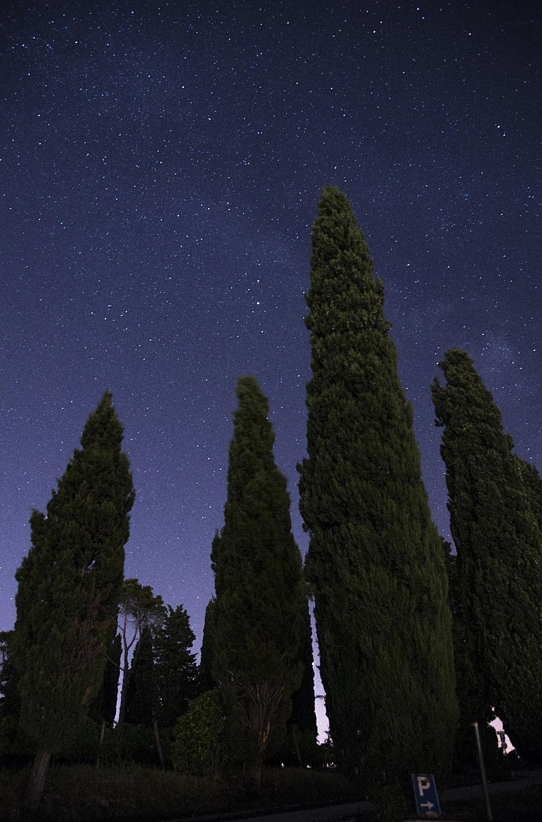 Su verso le stelle by Alessio Rendimonti