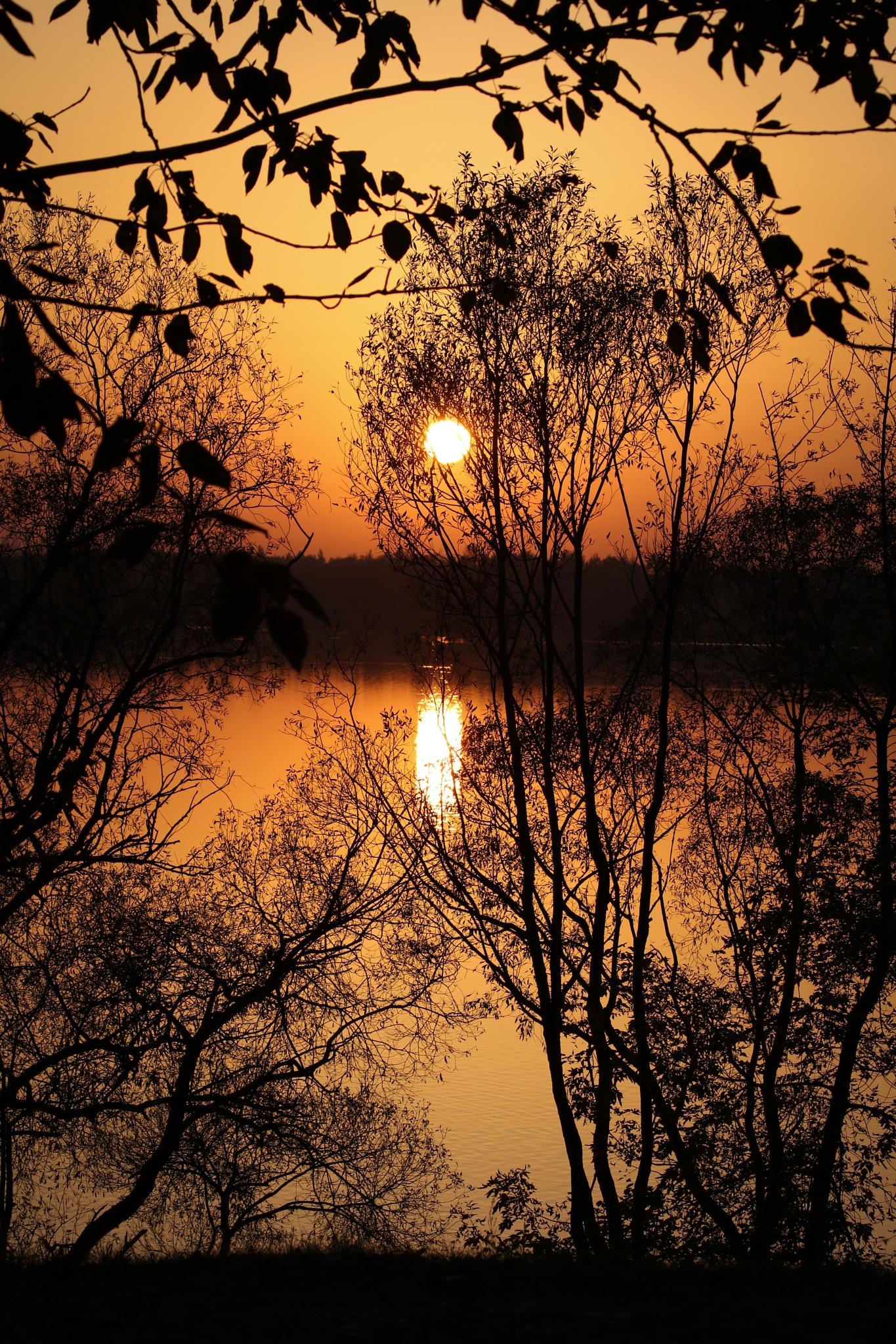 Sunset 2 by Kamil Rasała