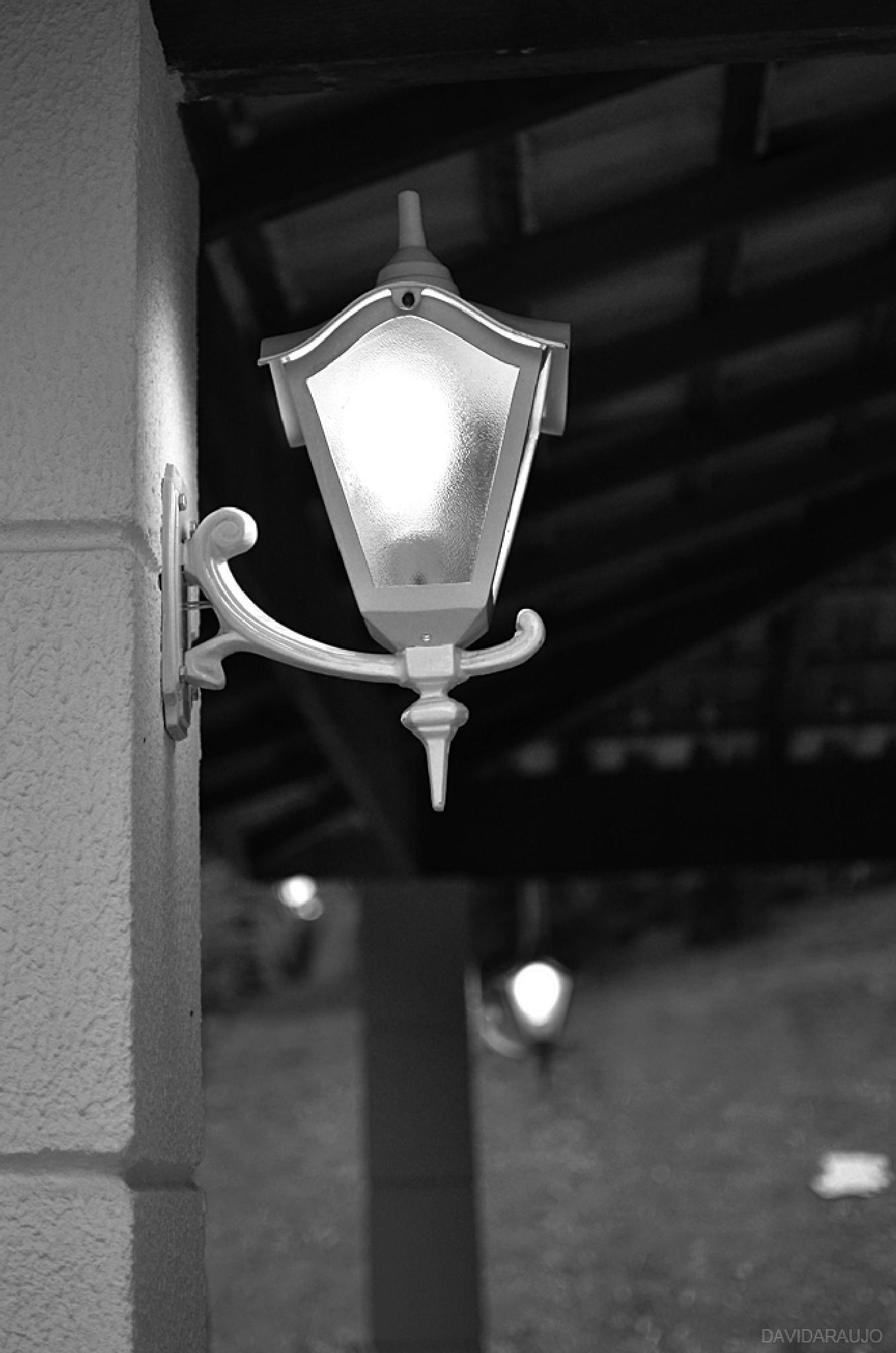 Light by David Araujo