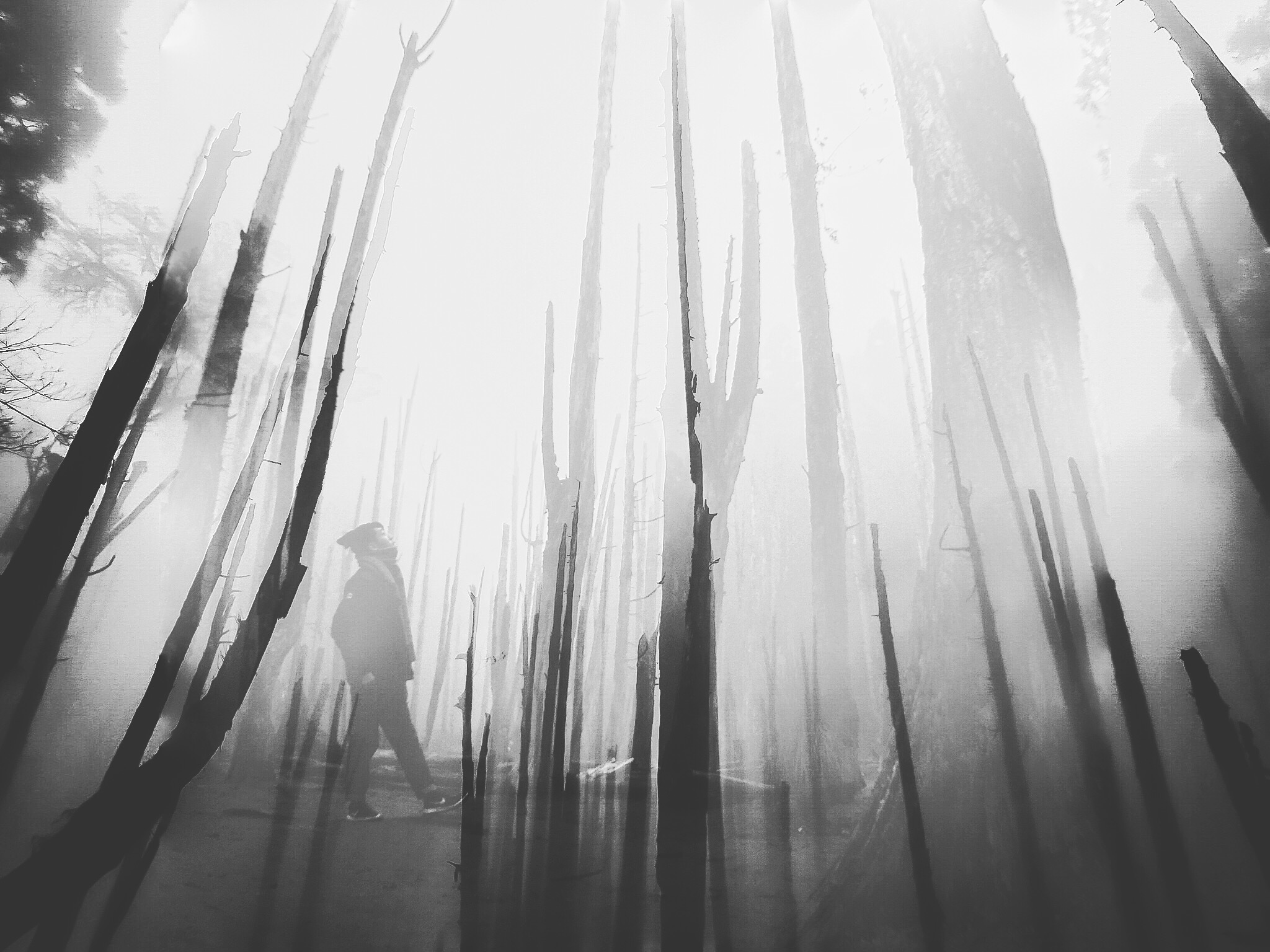 Double exposure by MK