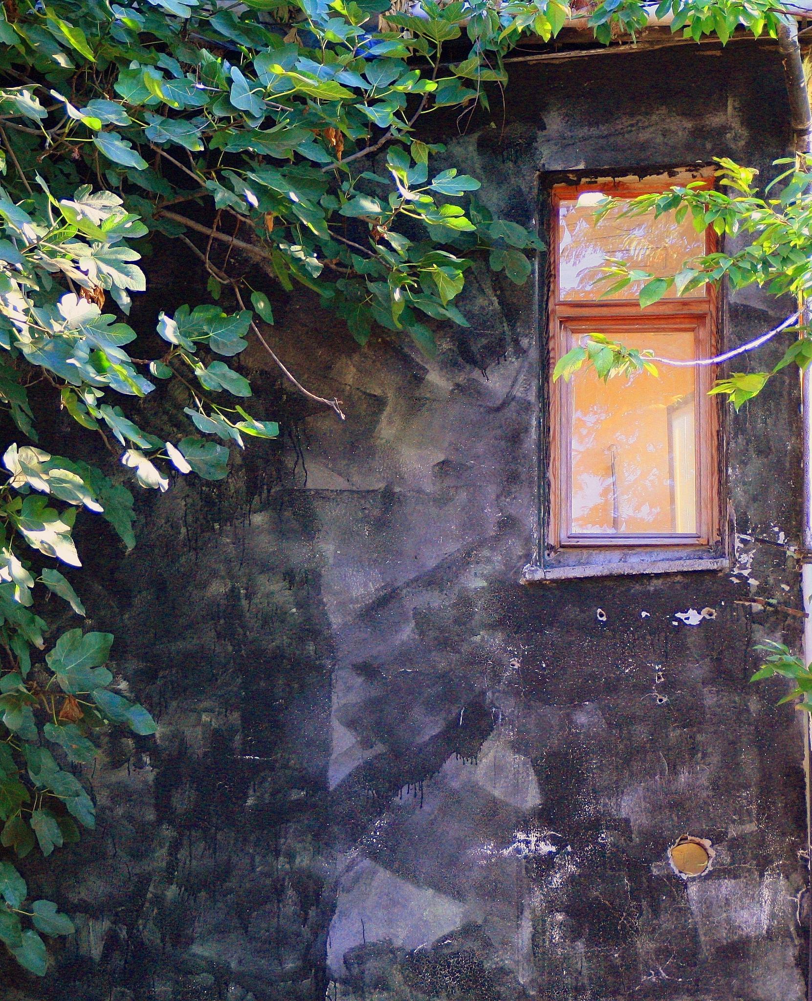 old house by Elisabeth Alkaya