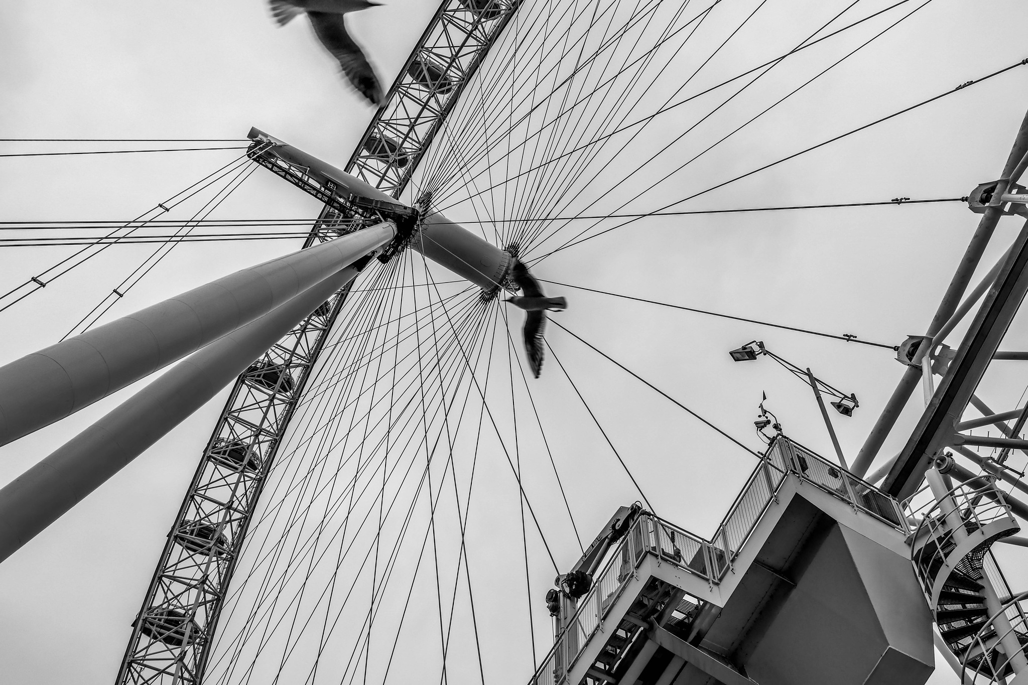 London Eye by Steph Peña